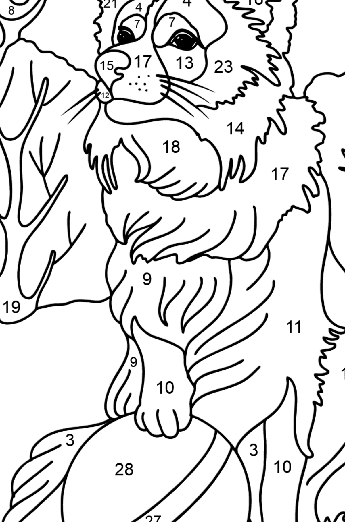 Collie coloring page - Coloring by Numbers for Kids