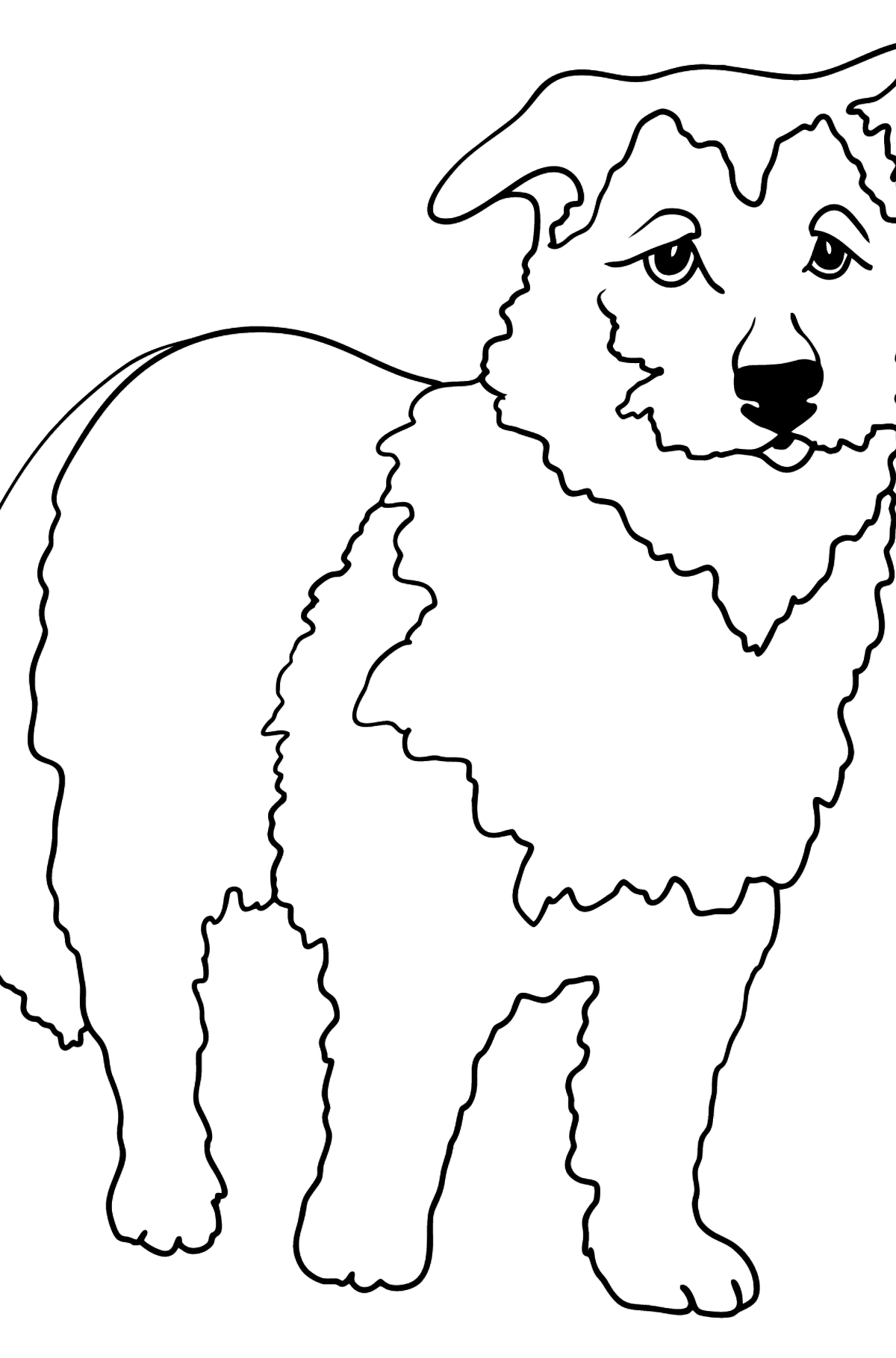 Golden shepherd coloring page - Coloring Pages for Kids