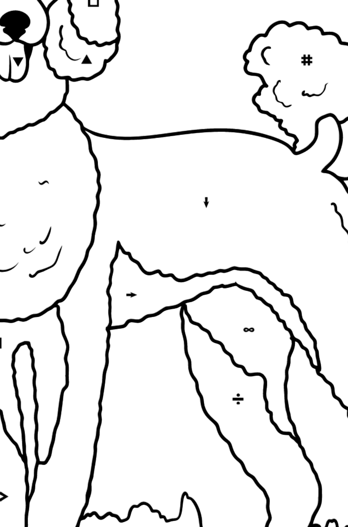 Poodle coloring page - Coloring by Symbols for Kids