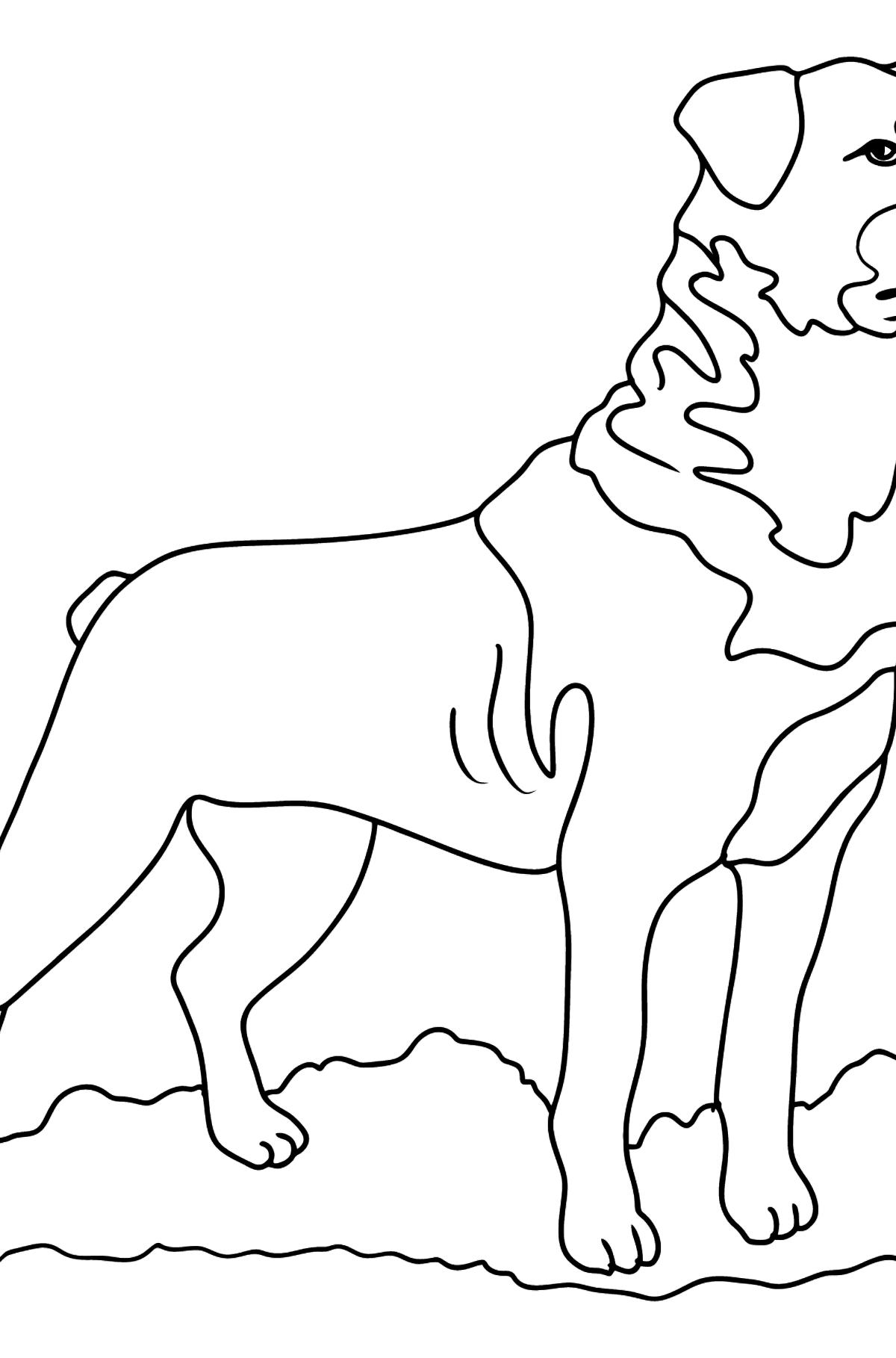 Rottweiler Ausmalbild - Malvorlagen für Kinder