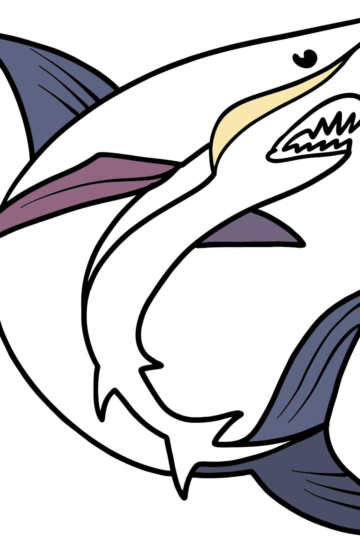 Shark coloring page - Coloring Pages for Kids