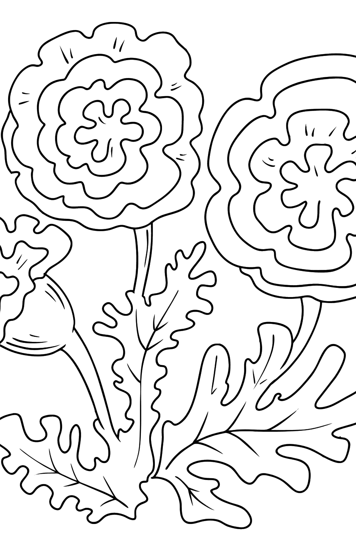 Coloring Page - Autumn flowers - Coloring Pages for Kids
