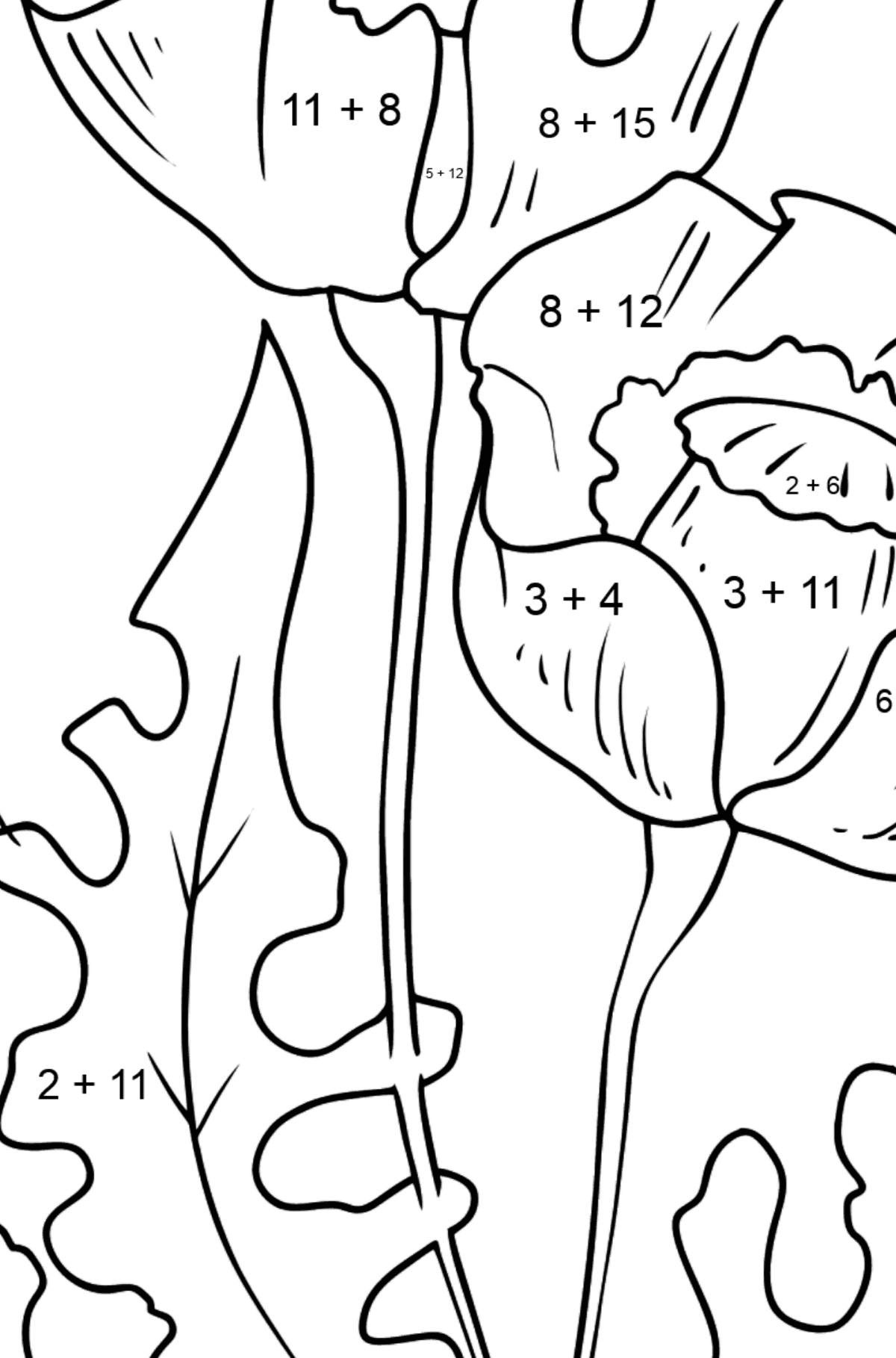 Flower Coloring Page - Beautiful Poppies - Math Coloring - Addition for Kids