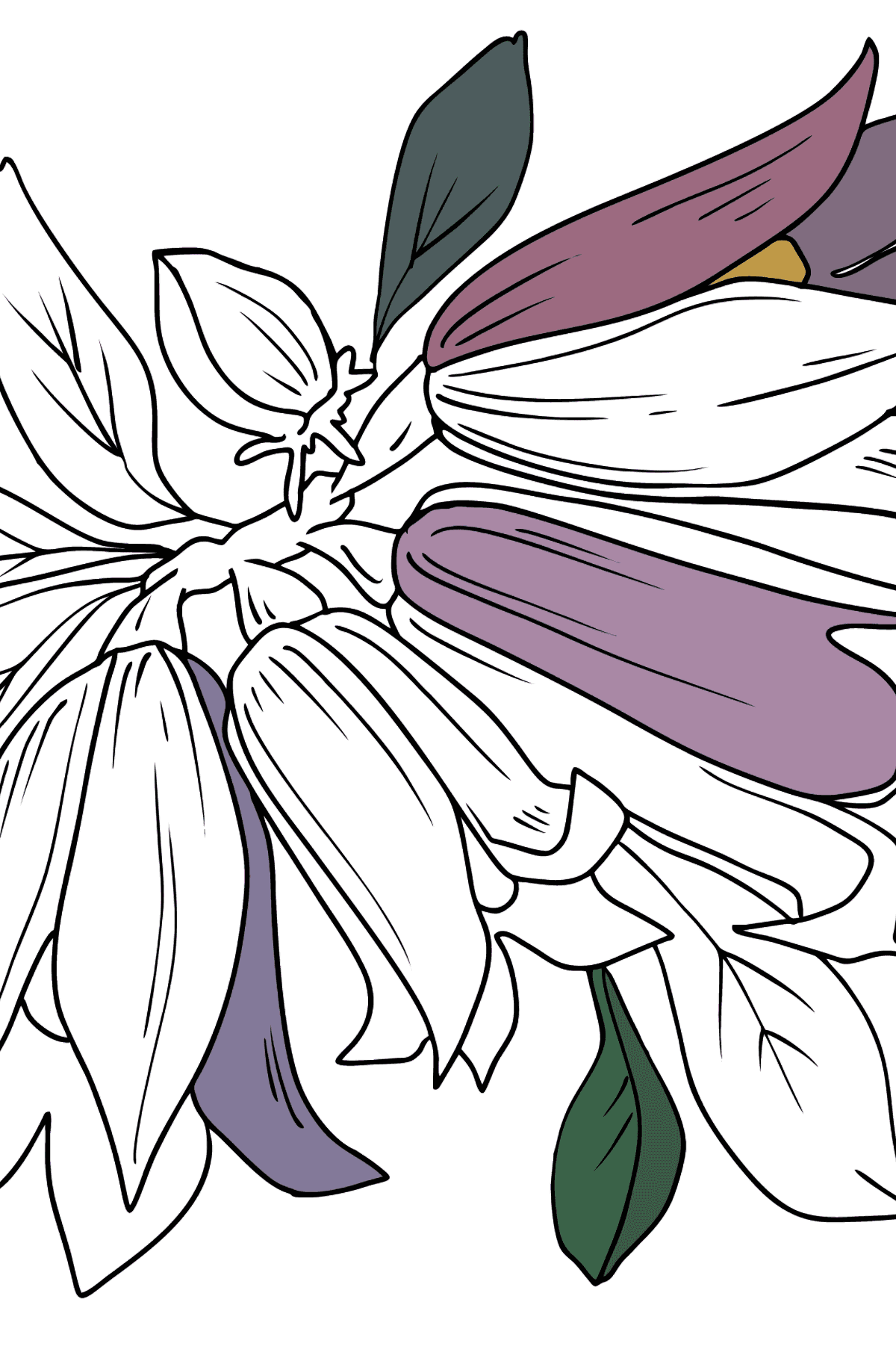 Flower Coloring Page - Bells - Coloring Pages for Kids