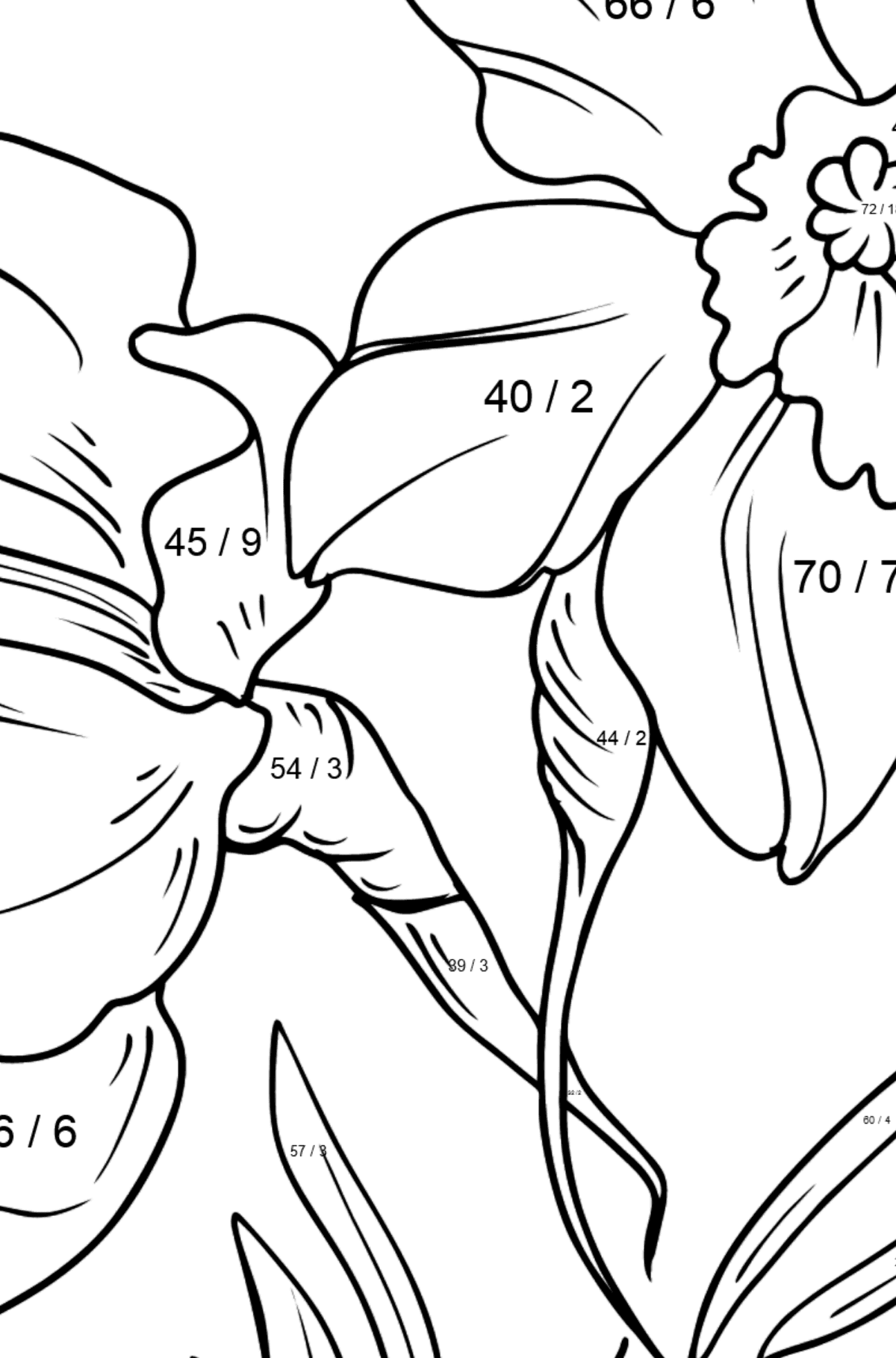Flower Coloring Page - Daffodils - Math Coloring - Division for Kids