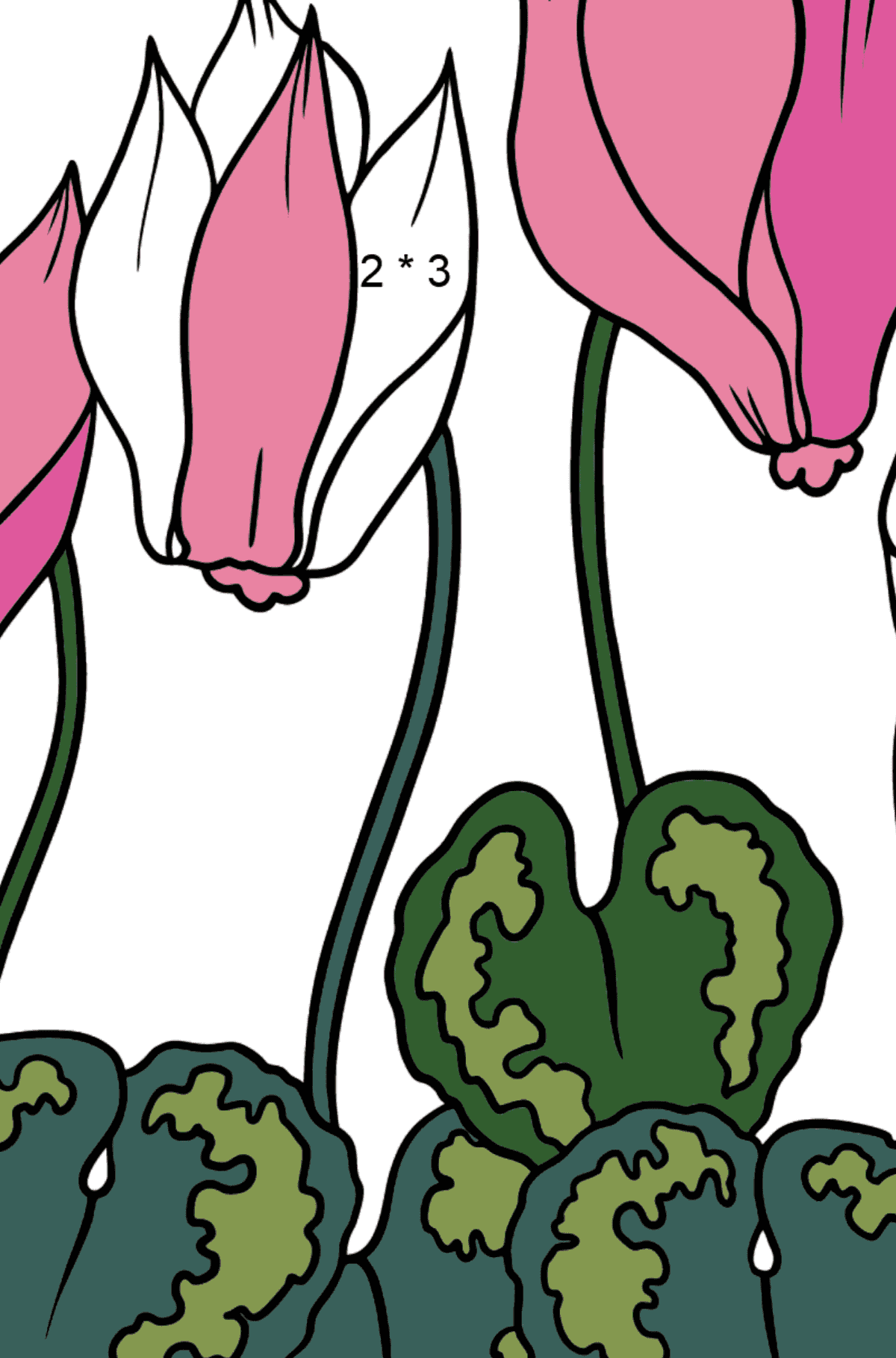 Flower Coloring Page - A Bright Pink Cyclamen - Math Coloring - Multiplication for Kids