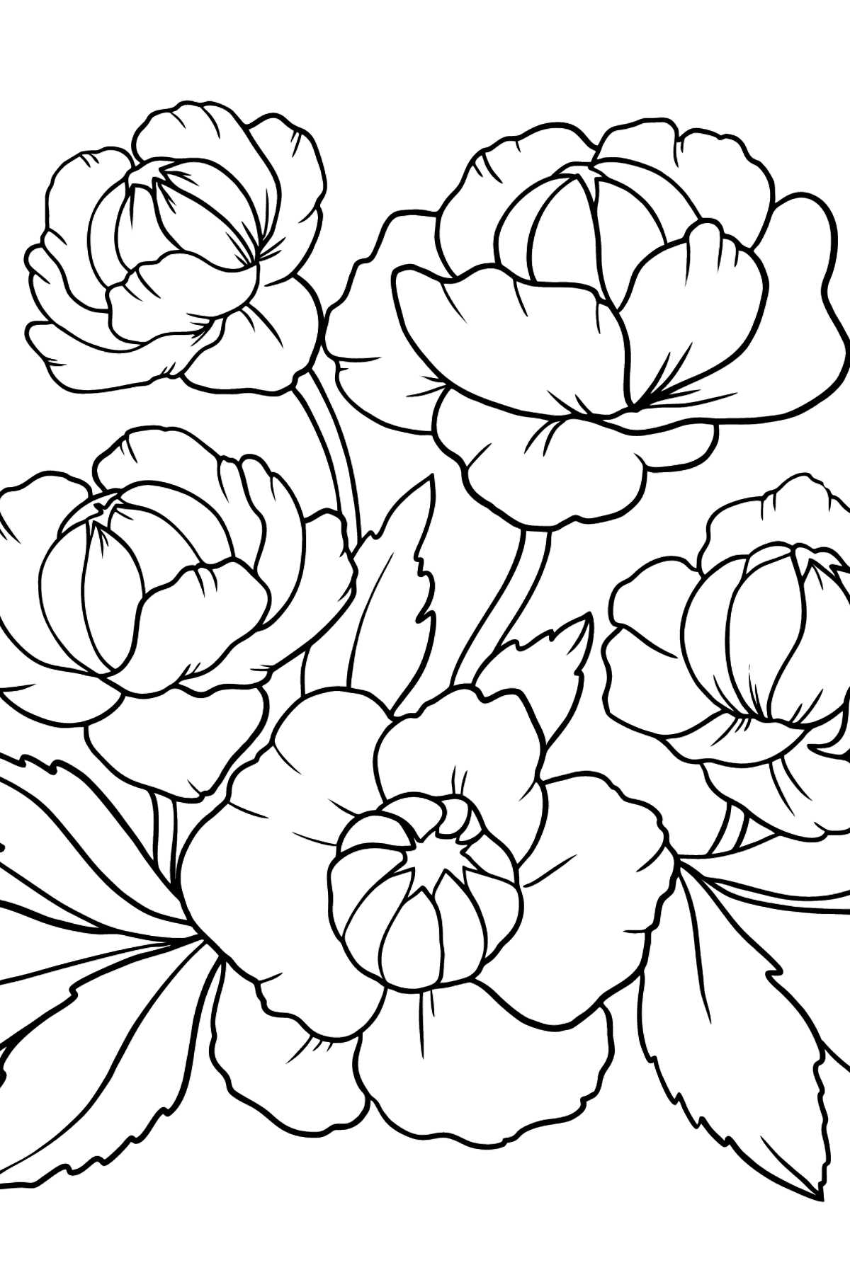 Flower Coloring Page - A Globeflower with Dark Red Petals - Coloring Pages for Kids
