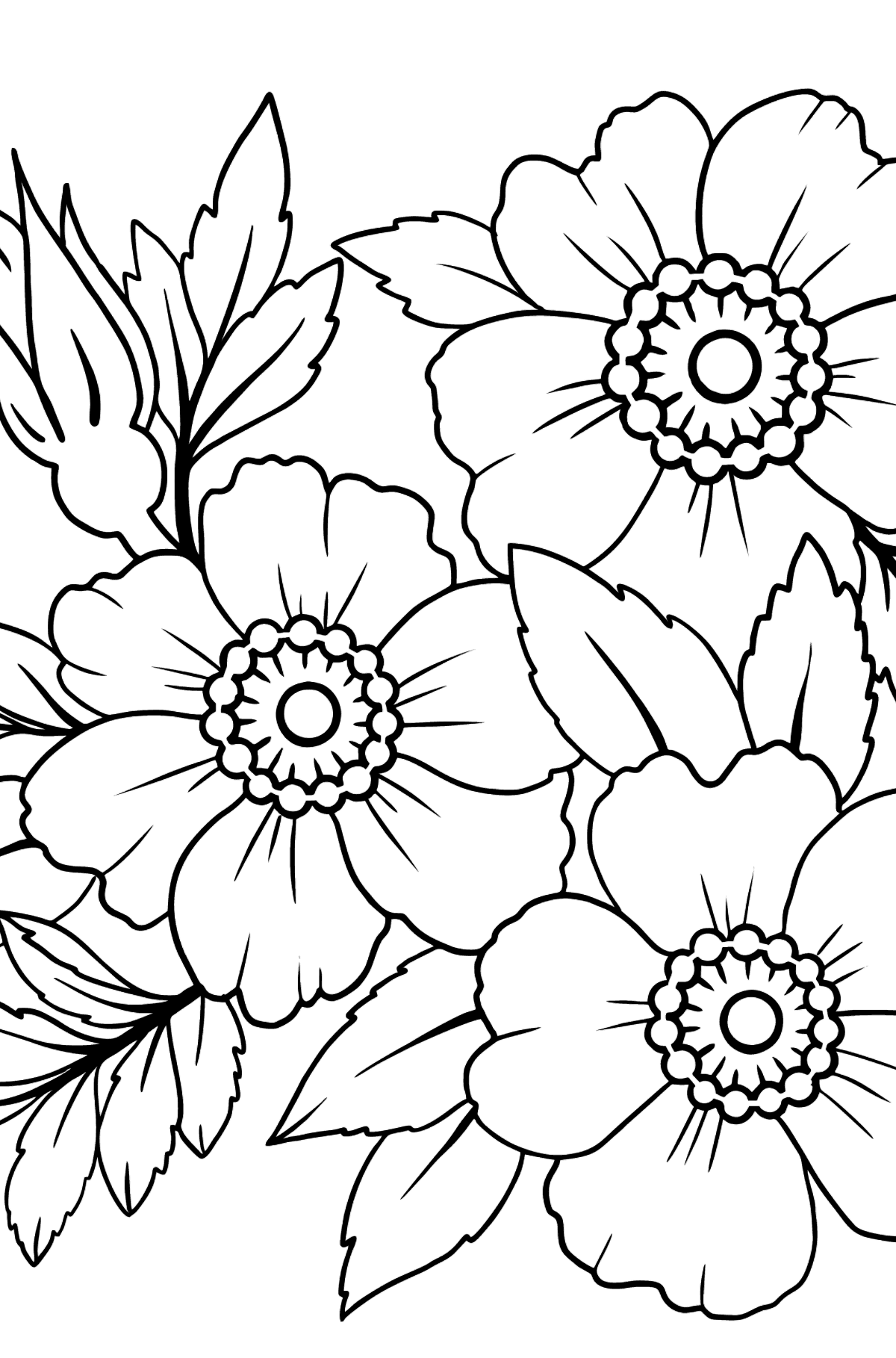Flower Coloring Page (A4) - A Japanese Anemone with Pink Petals - Coloring Pages for Kids