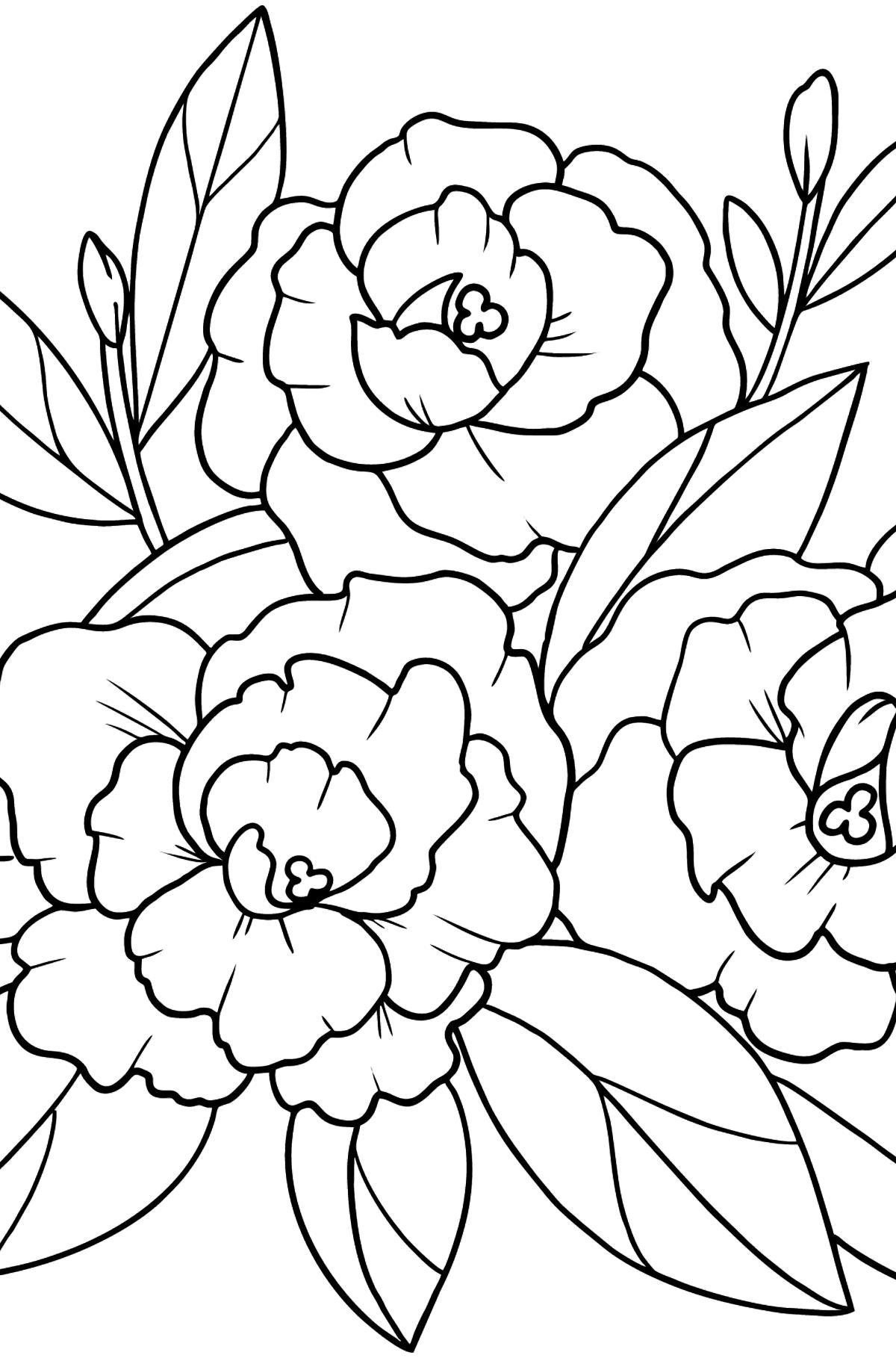 Раскраска Пион Цветы - Картинки для Детей
