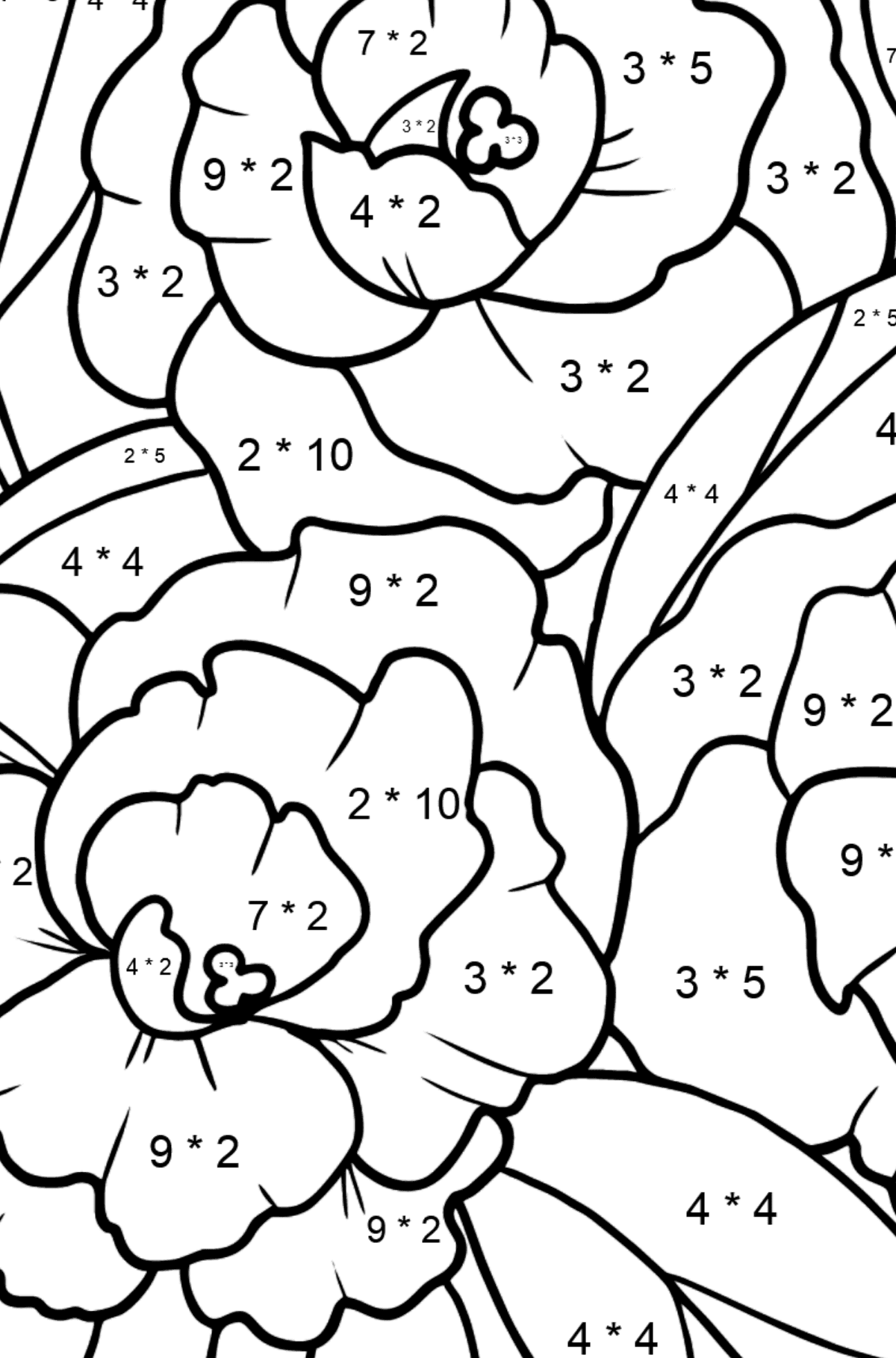 Flower Coloring Page - A Peony Blossom - Math Coloring - Multiplication for Kids