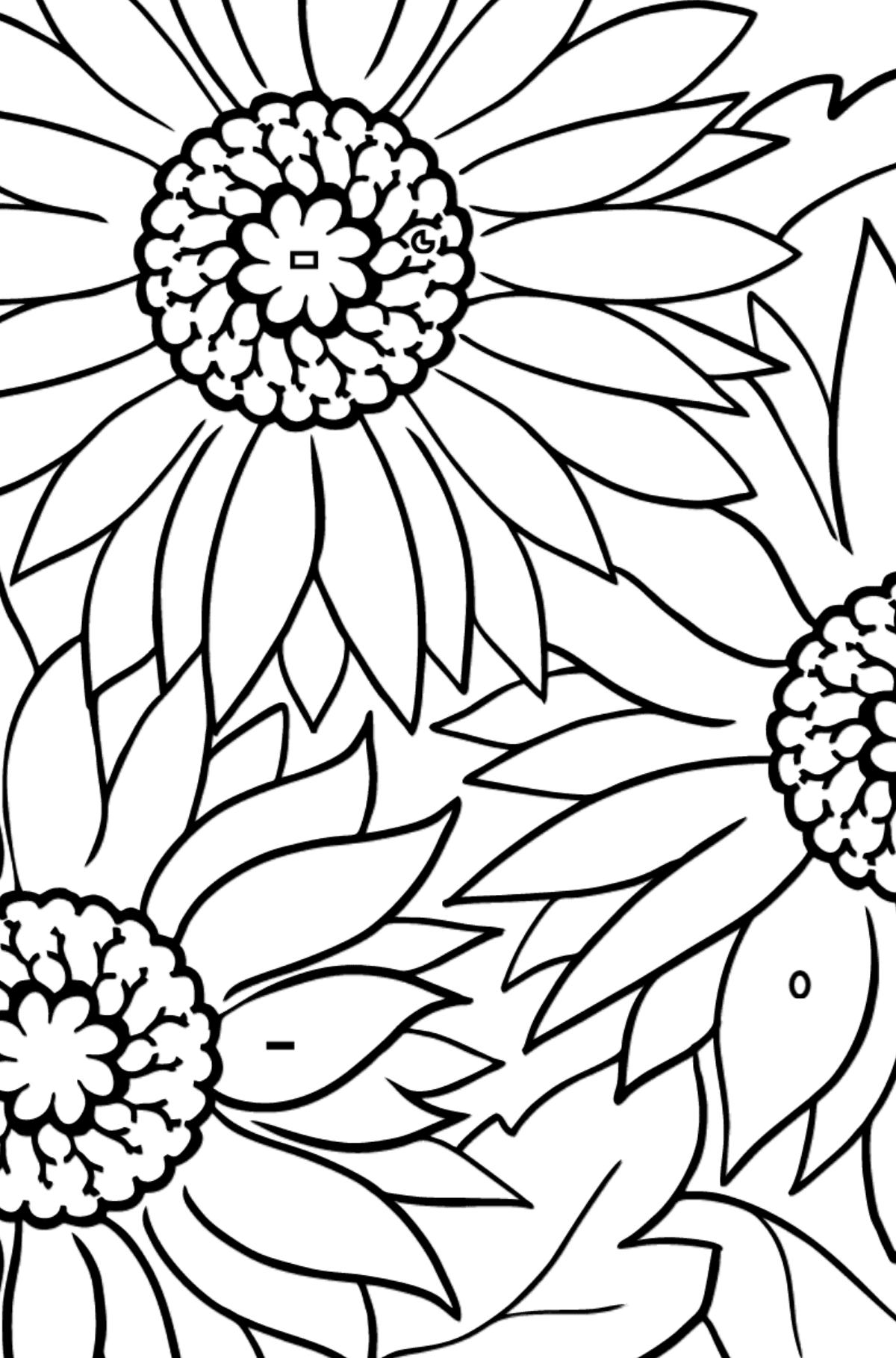 Coloring Flowers for the Youngest Children - Pink Gerbera - Coloring by Symbols and Geometric Shapes for Kids