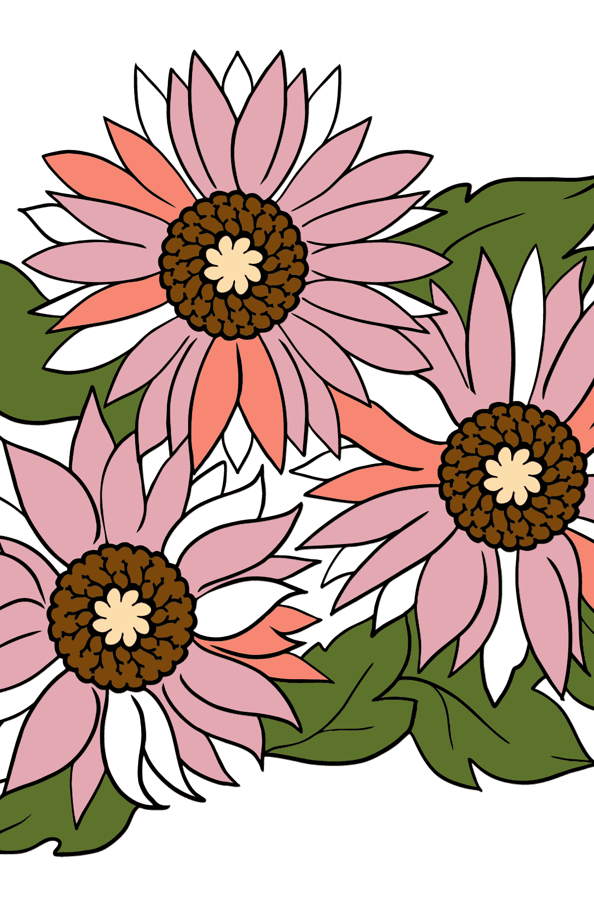 Coloring Flowers for the Youngest Children - Pink Gerbera - Coloring Pages for Kids