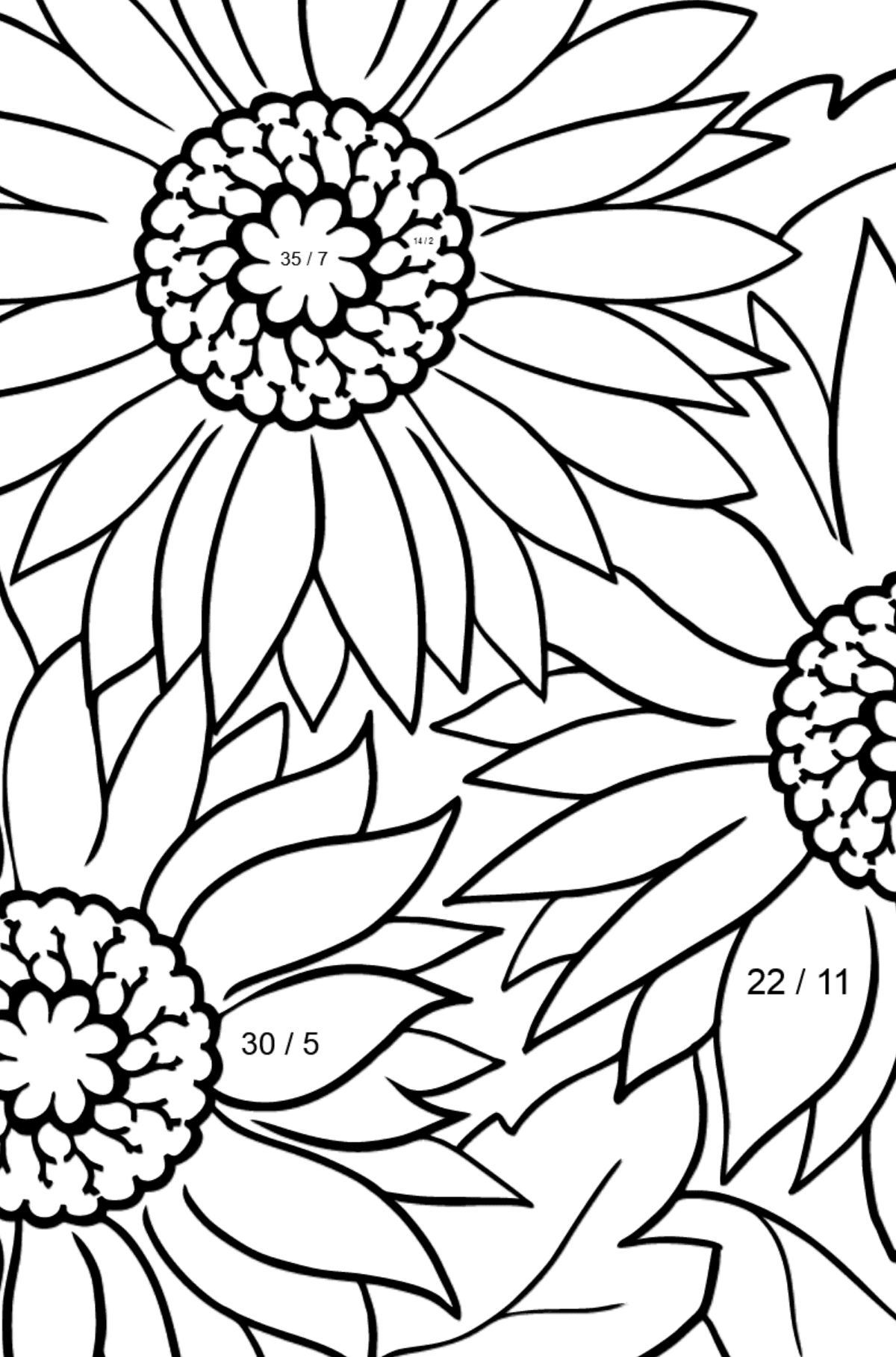Coloring Flowers for the Youngest Children - Pink Gerbera - Math Coloring - Division for Kids