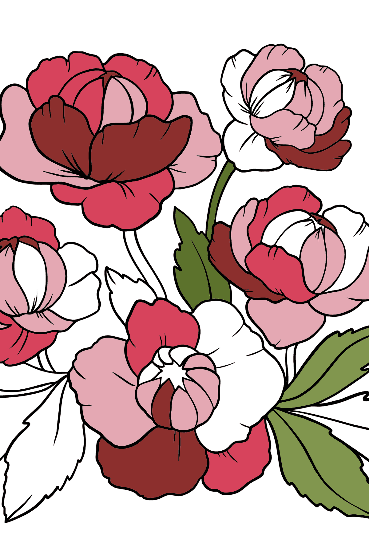 Flower Coloring Page - A Pink Globeflower - Coloring Pages for Kids