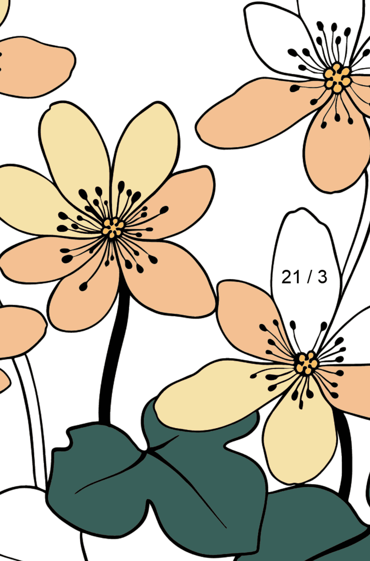 Flower Coloring Page - A Yellow and Orange Hepatica - Math Coloring - Division for Kids