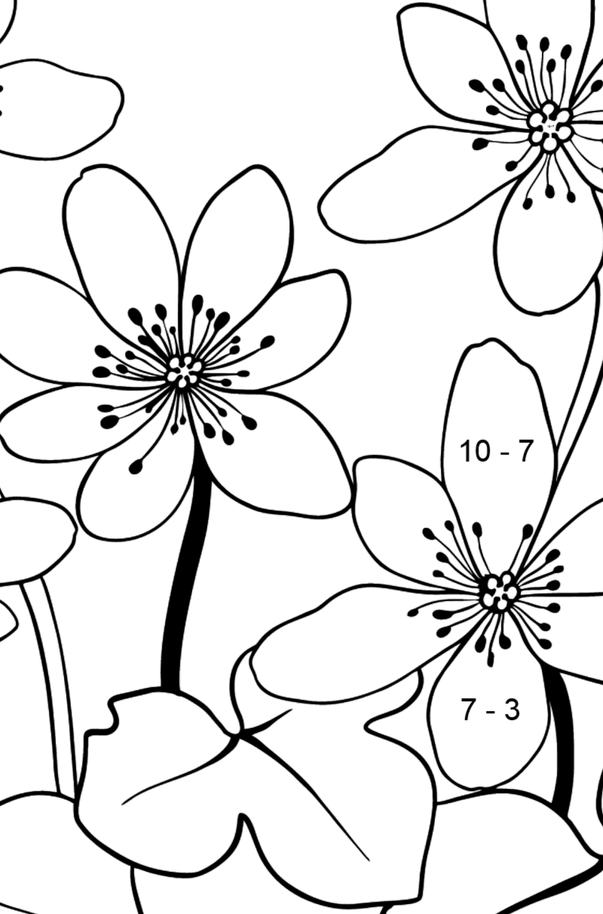 Flower Coloring Page - A Yellow and Orange Hepatica - Math Coloring - Subtraction for Kids