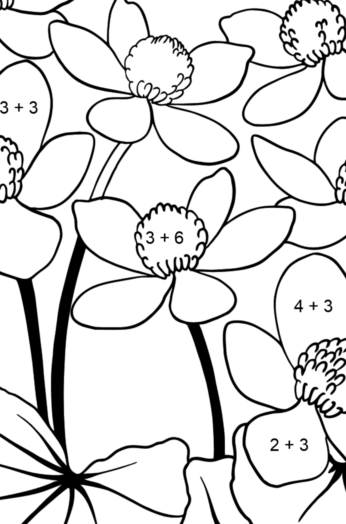 Flower Coloring Page - A Yellow and Red Marsh Marigold - Math Coloring - Addition for Kids