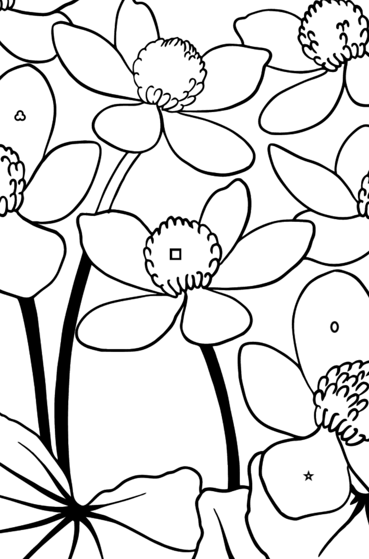 Flower Coloring Page - A Yellow and Red Marsh Marigold - Coloring by Geometric Shapes for Kids