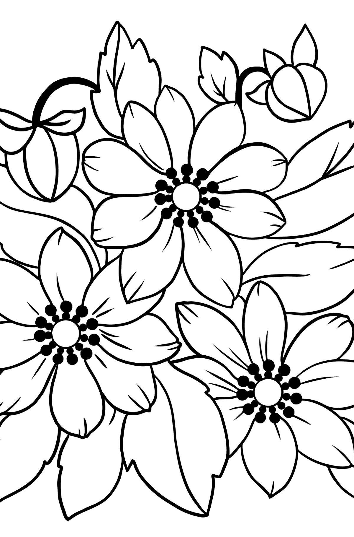 Flower Coloring Page - An Orange and Yellow Anemone - Coloring Pages for Kids