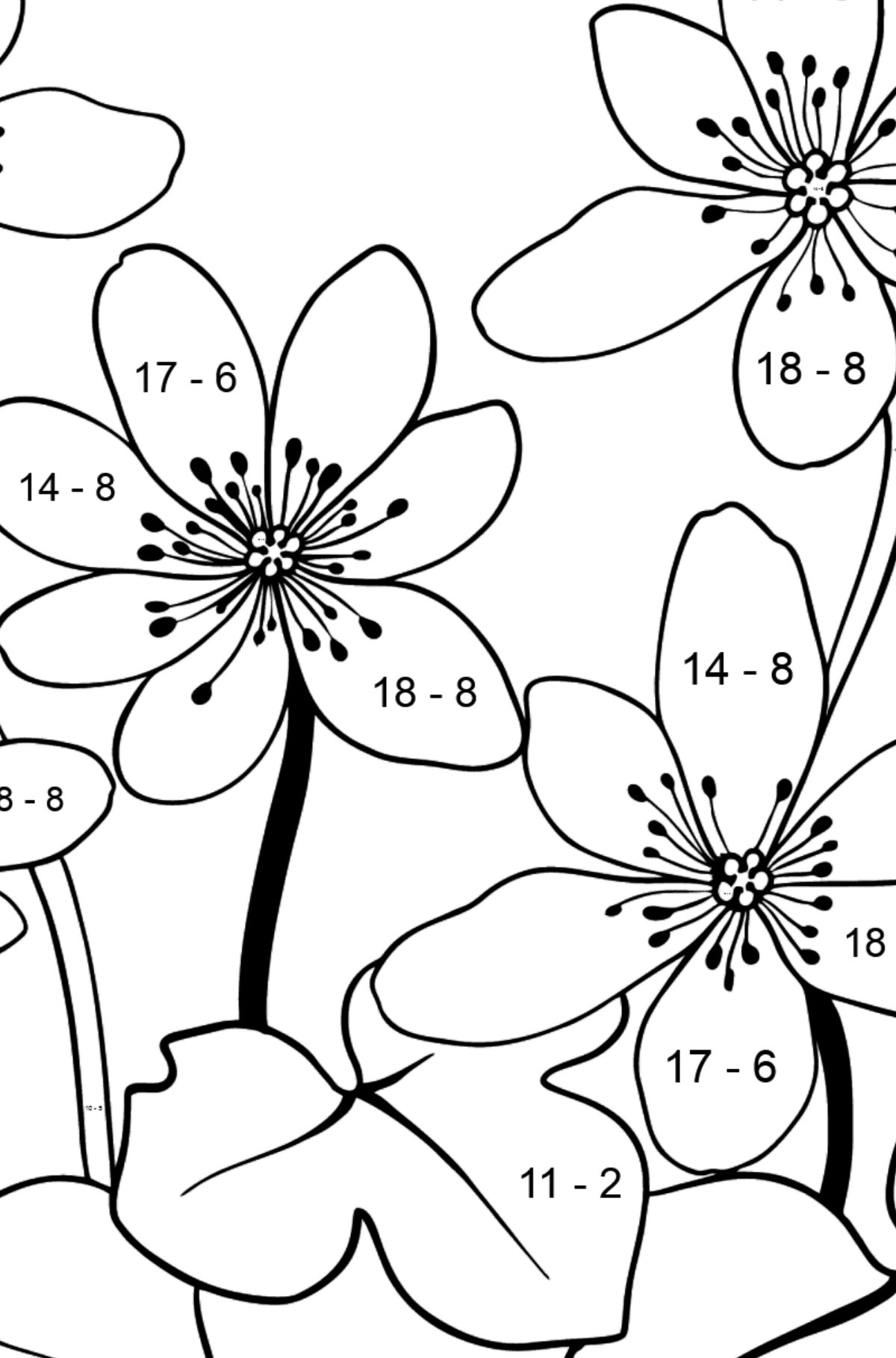 Flower Coloring Page - Hepatica - Math Coloring - Subtraction for Kids