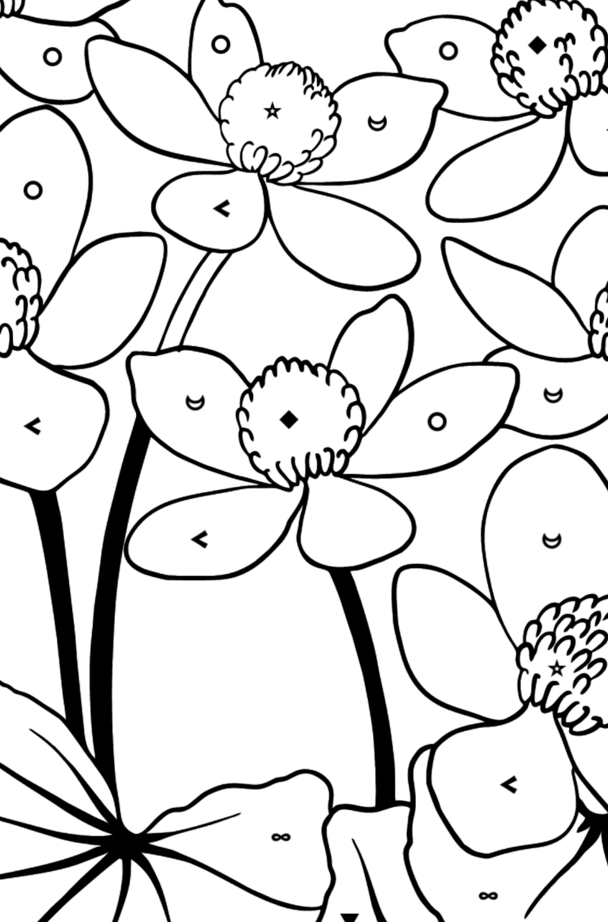 Flower Coloring Page - Marsh Marigold - Coloring by Symbols and Geometric Shapes for Kids
