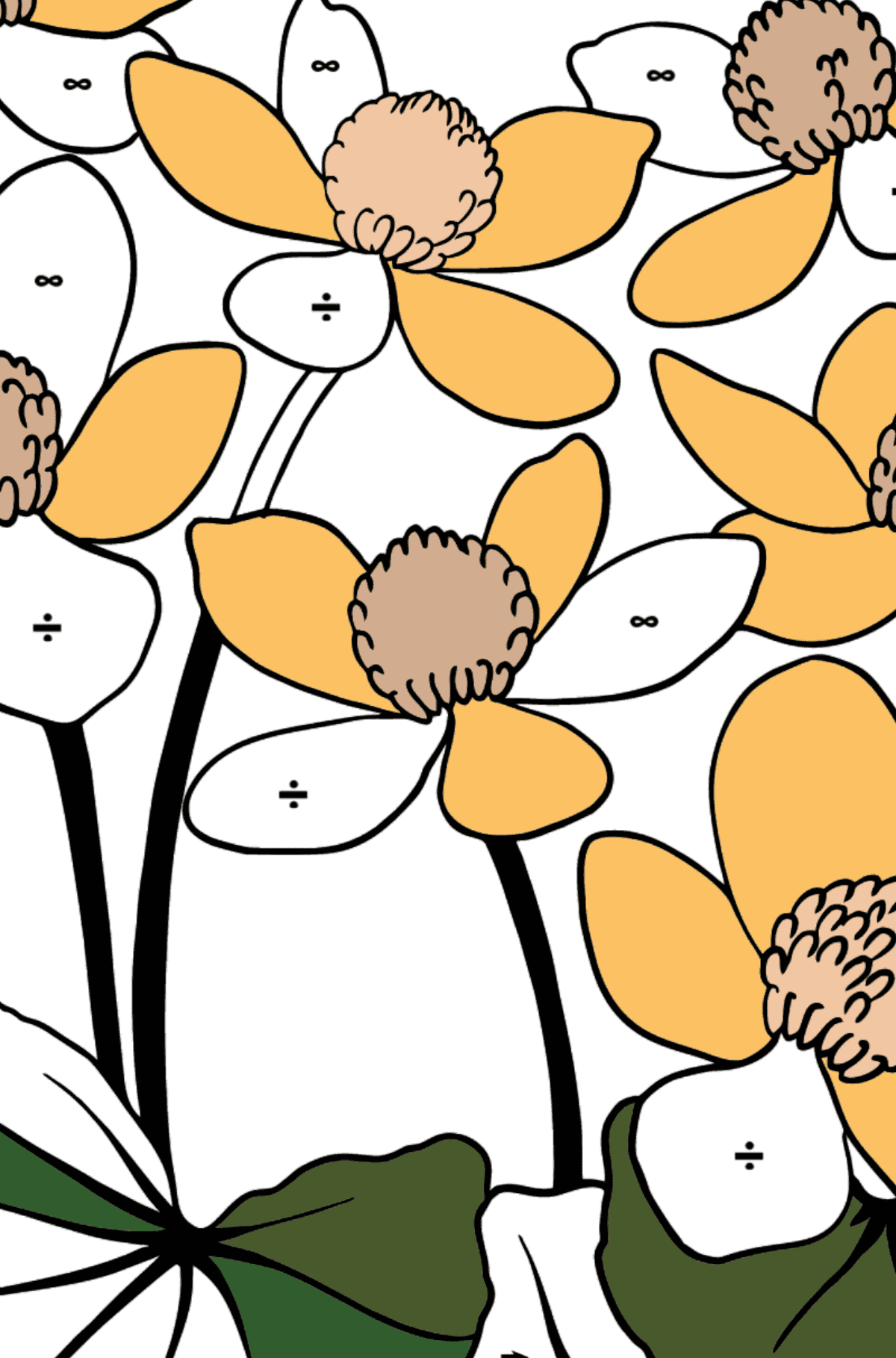 Flower Coloring Page - Marsh Marigold - Coloring by Symbols for Kids
