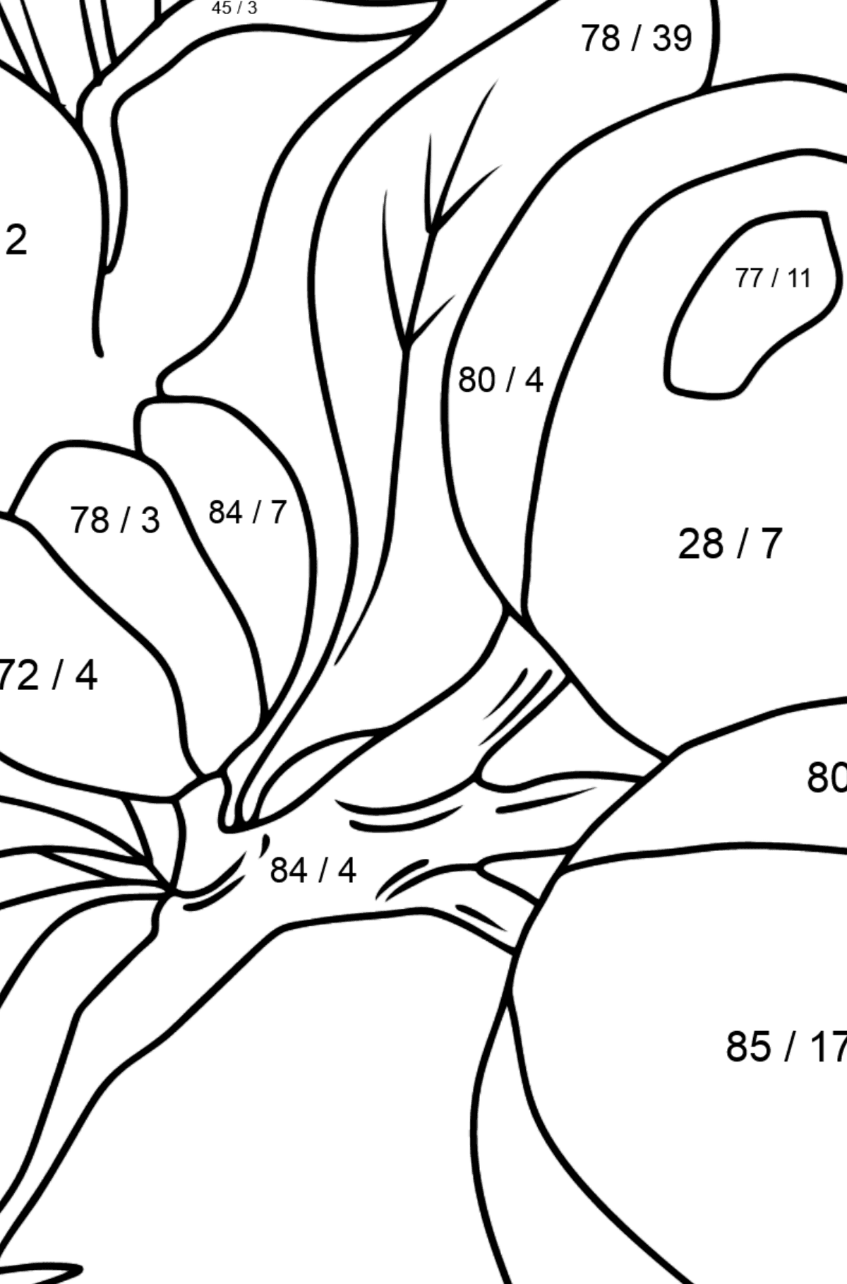 Coloring Page - flowers and fruits - Math Coloring - Division for Kids