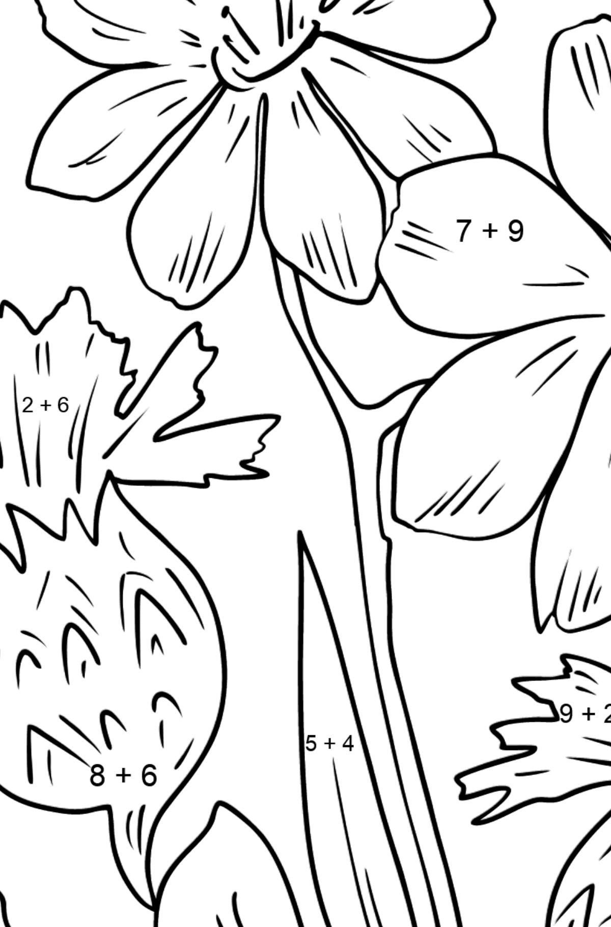Flower Coloring Page - flowers in the meadow - Math Coloring - Addition for Kids