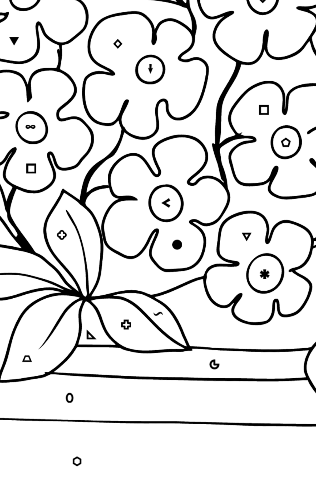 Flower Coloring Page - Forget me nots - Coloring by Symbols and Geometric Shapes for Kids