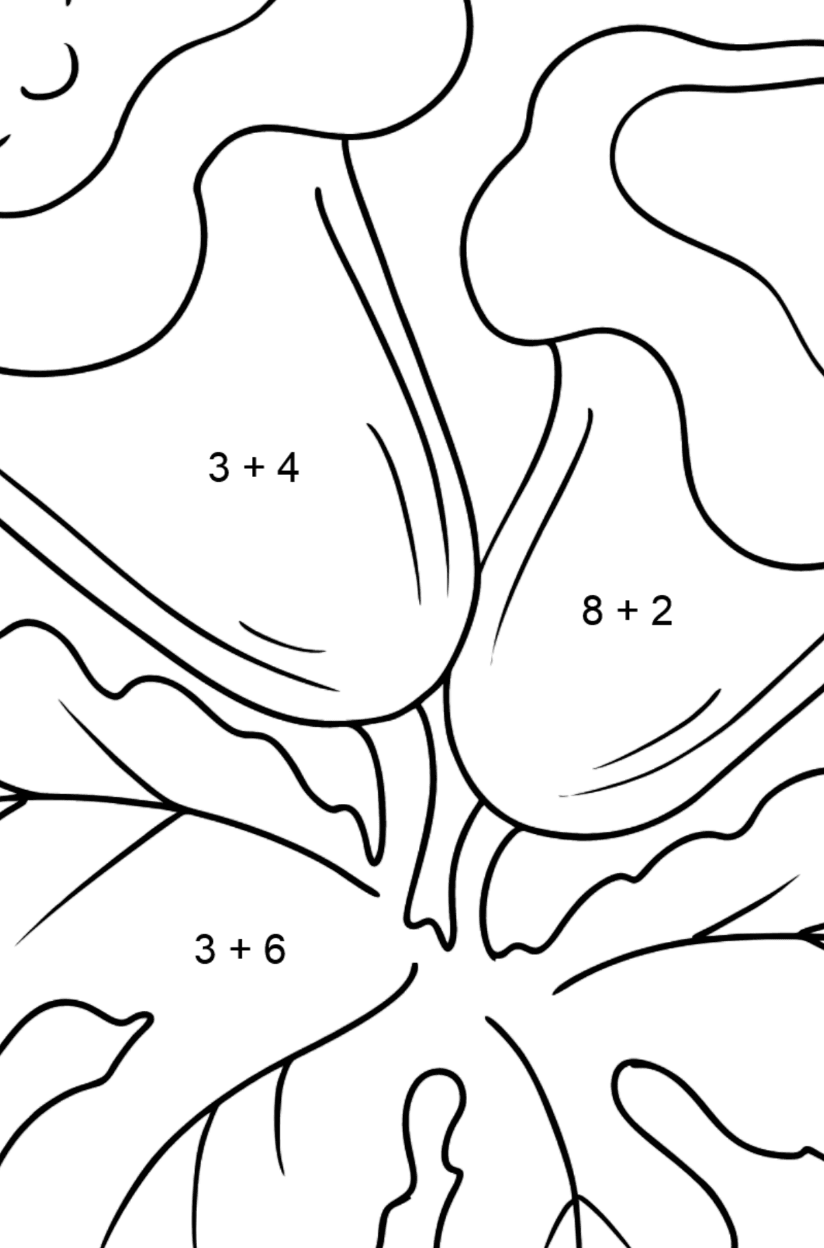 Coloring Page - Indoor flowers - Math Coloring - Addition for Kids