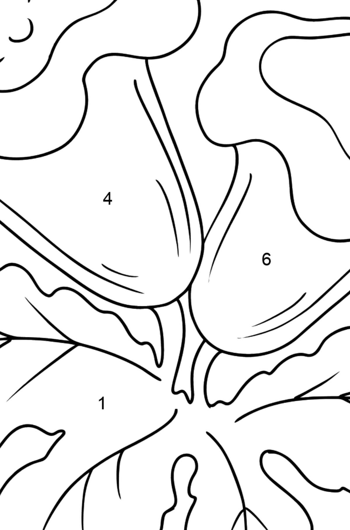 Coloring Page - Indoor flowers - Coloring by Numbers for Kids
