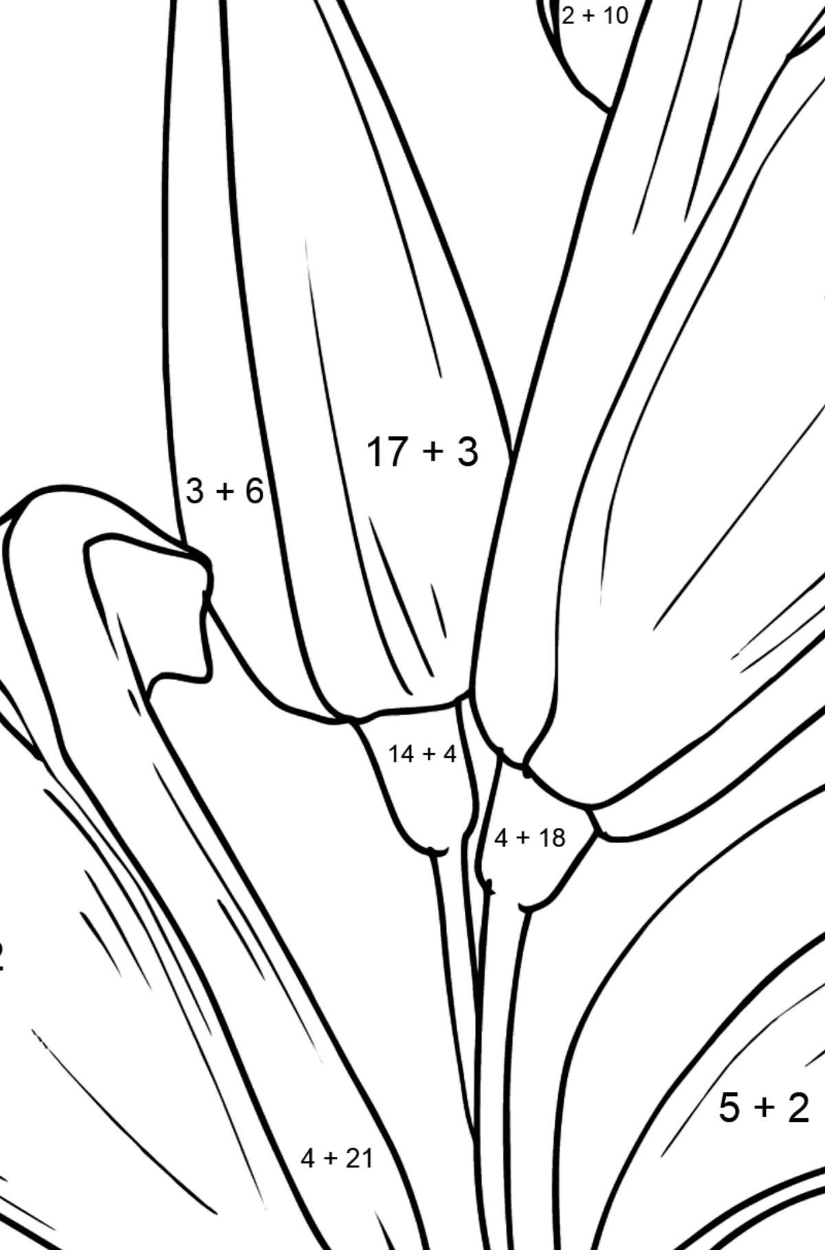 Flower Coloring Page - Lilies - Math Coloring - Addition for Kids