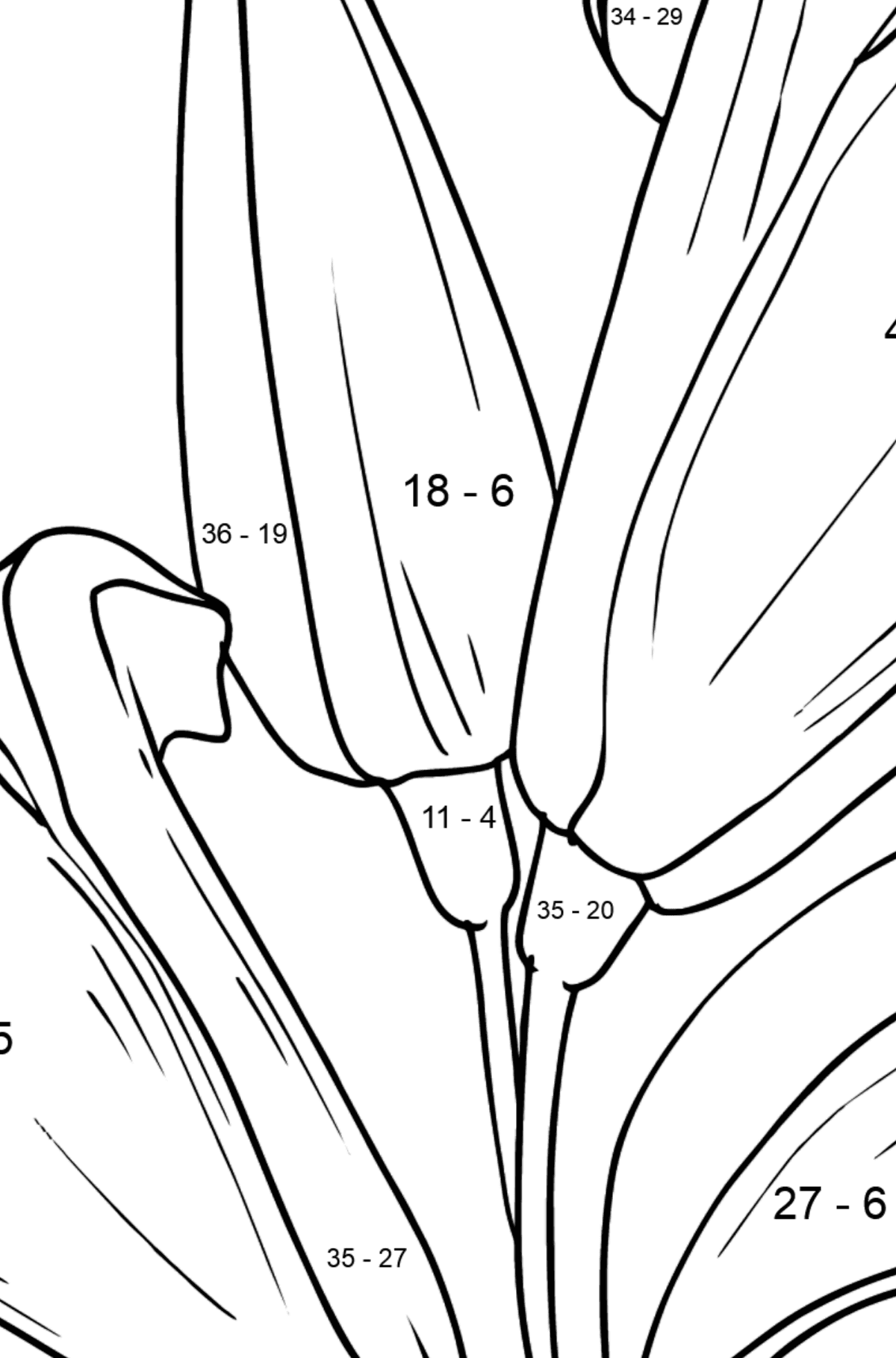Flower Coloring Page - Lilies - Math Coloring - Subtraction for Kids