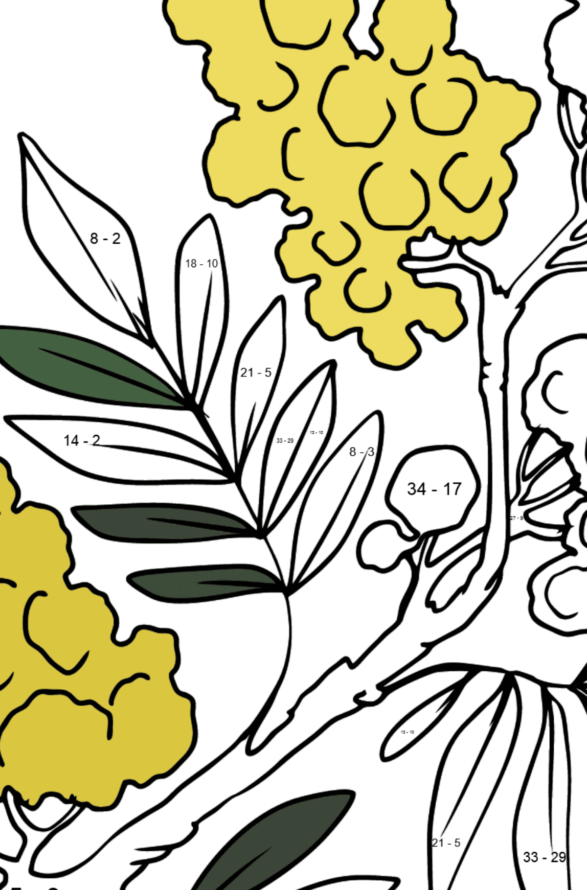 Flower Coloring Page - Mimosa - Math Coloring - Subtraction for Kids