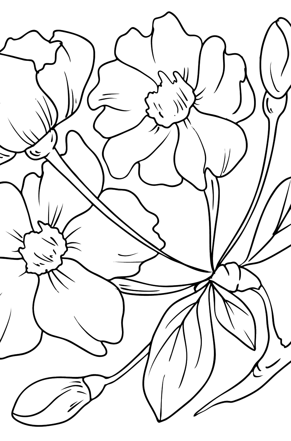 Flower Coloring Page - Sakura - Coloring Pages for Kids