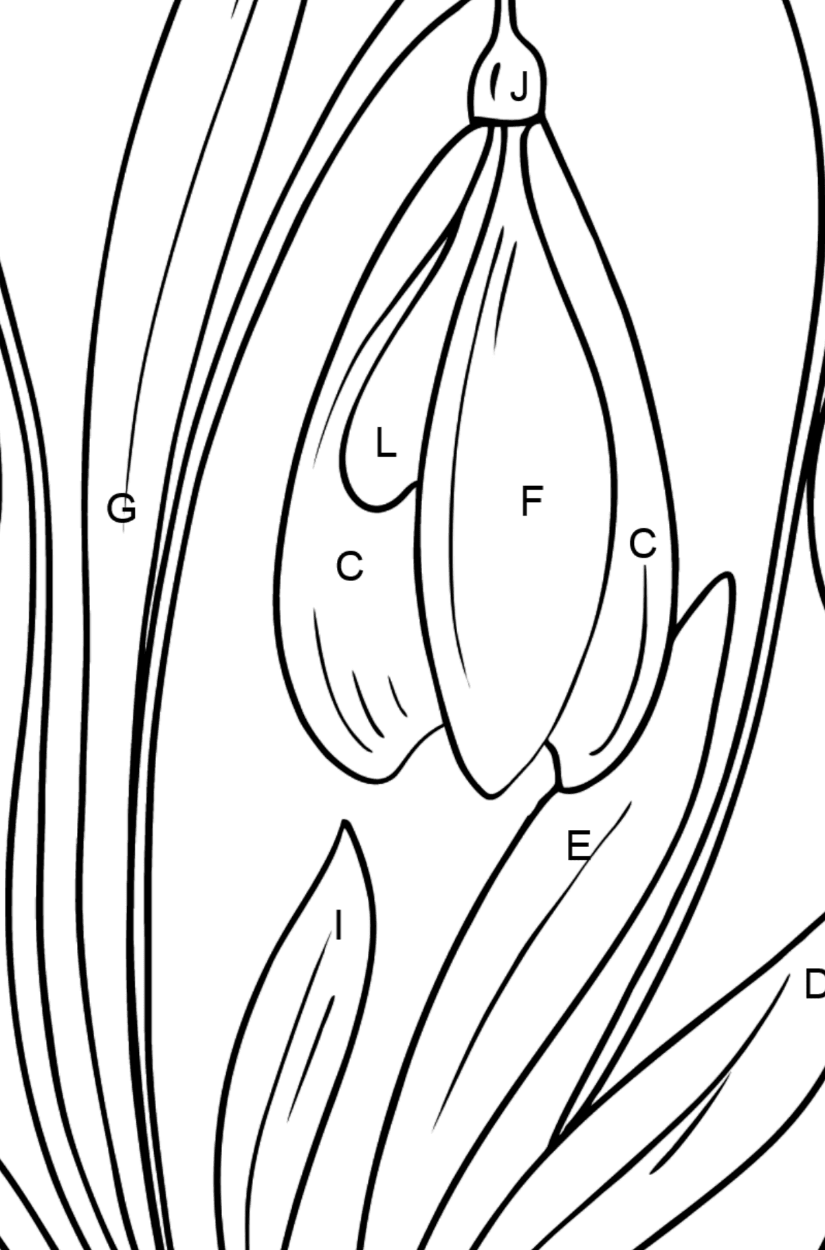Snowdrops Coloring Page - Coloring by Letters for Kids