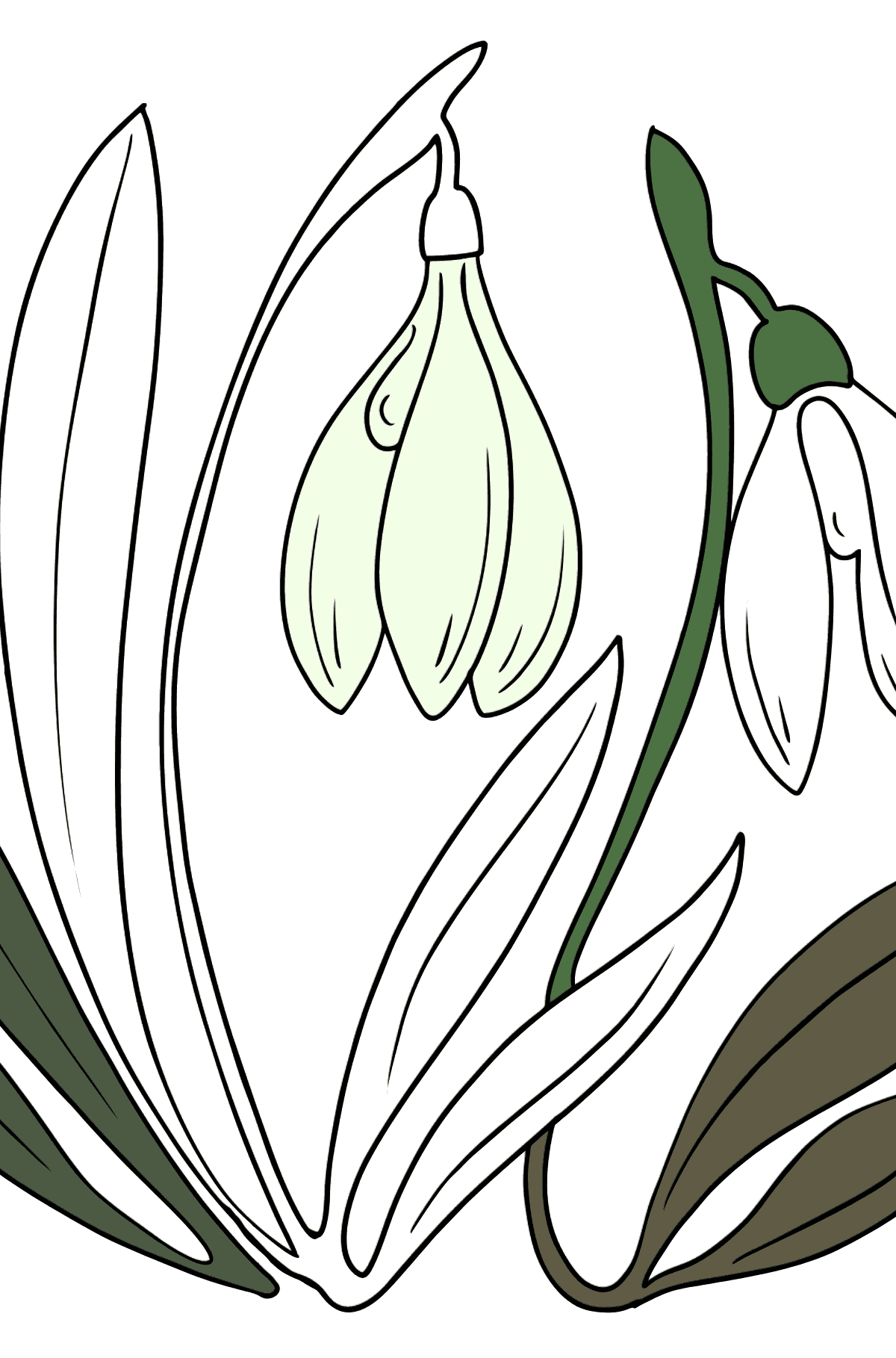 Coloring Page - spring flowers - Coloring Pages for Kids