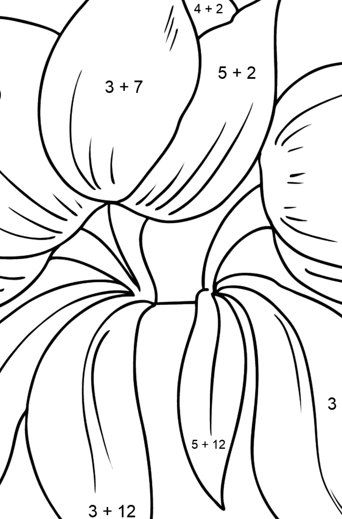 Flower Coloring Page - Tulips - Math Coloring - Addition for Kids