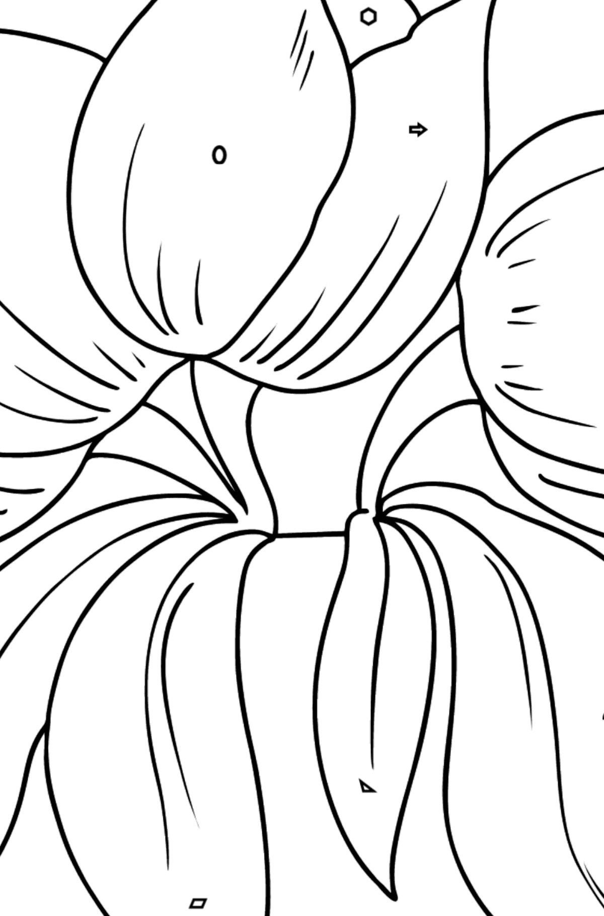 Flower Coloring Page - Tulips - Coloring by Geometric Shapes for Kids