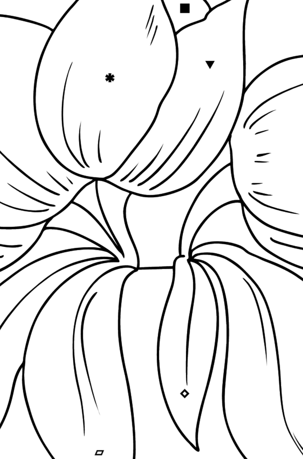Flower Coloring Page - Tulips - Coloring by Symbols and Geometric Shapes for Kids