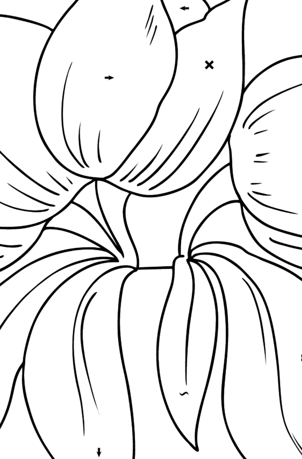Flower Coloring Page - Tulips - Coloring by Symbols for Kids