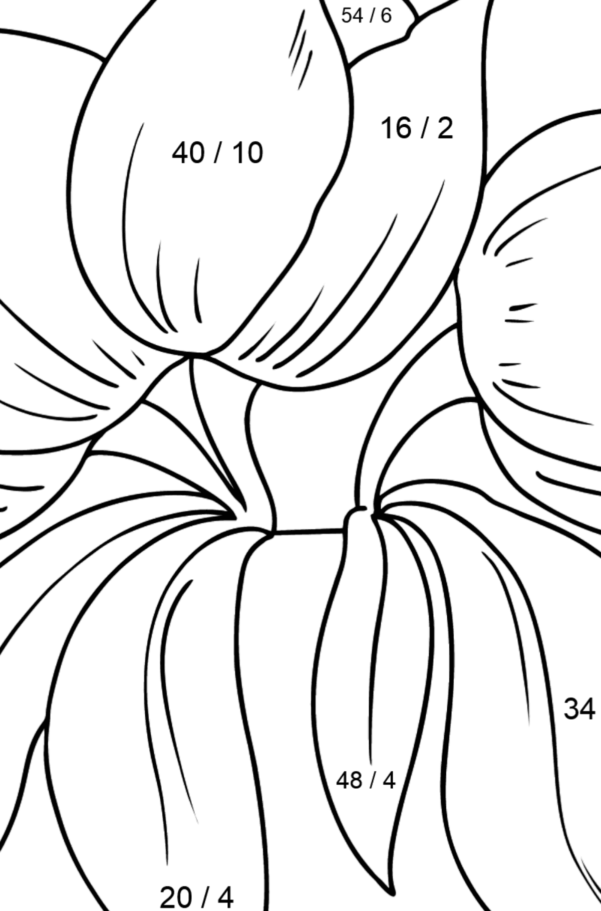 Flower Coloring Page - Tulips - Math Coloring - Division for Kids