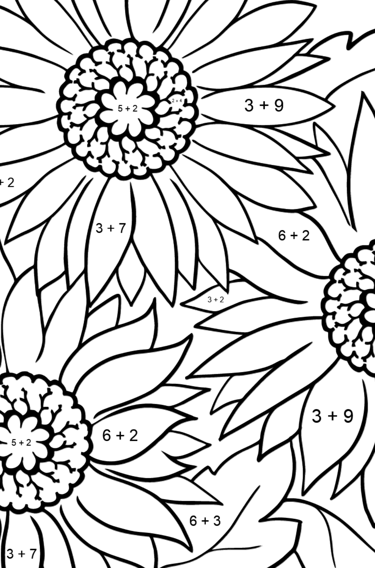 Coloring Page - Yellow Gerbera - Math Coloring - Addition for Kids