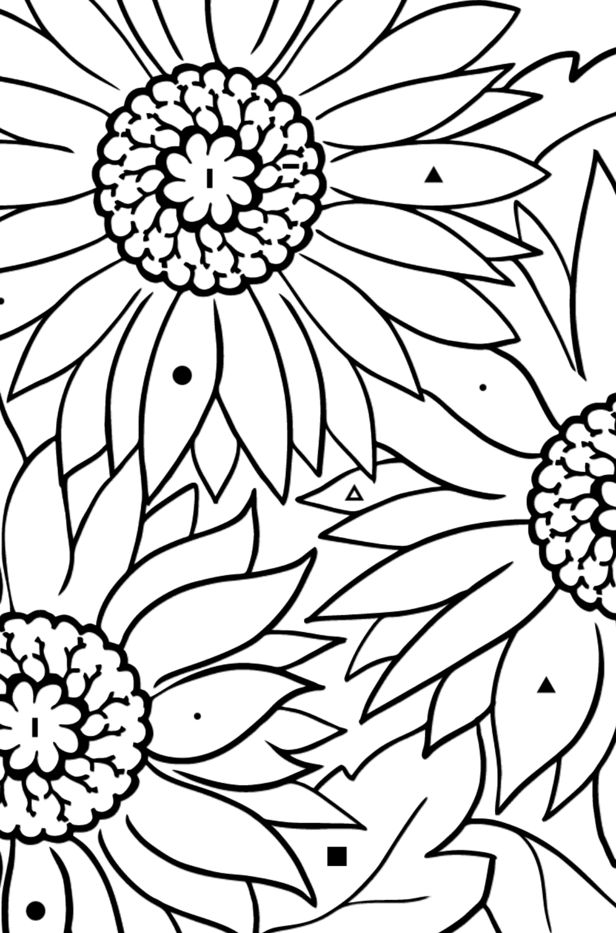Coloring Page - Yellow Gerbera - Coloring by Symbols for Kids