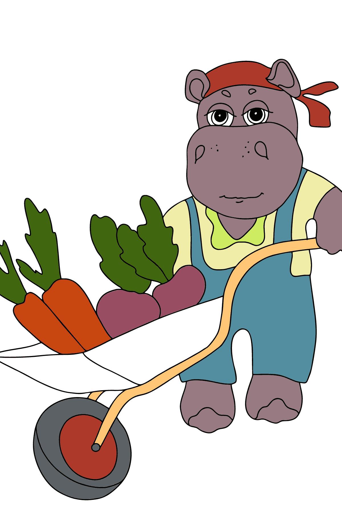 Dibujos para Colorear con Hipopótamos