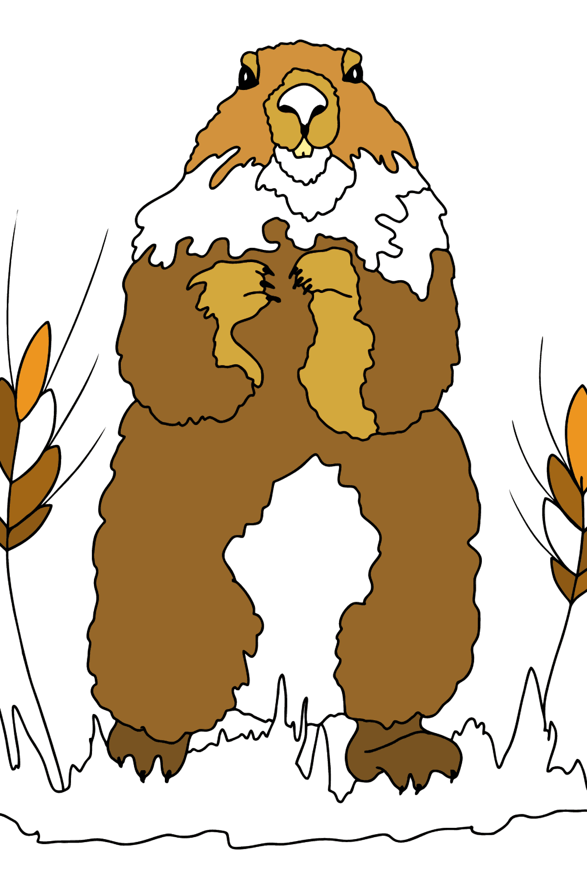 Coloring Page - A Groundhog is Looking out of Its Burrow - Coloring Pages for Kids
