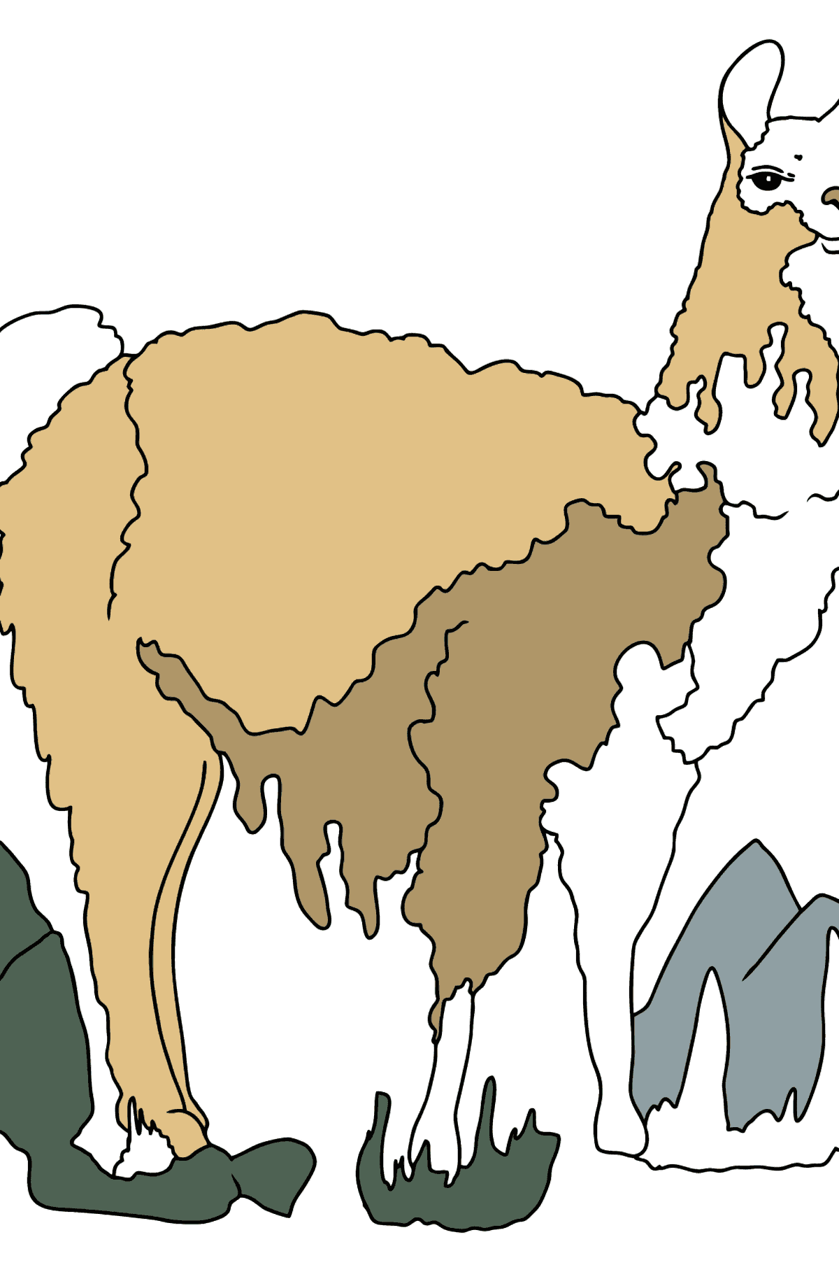 Coloring Page - A Lama is Inspecting the Area - Coloring Pages for Kids