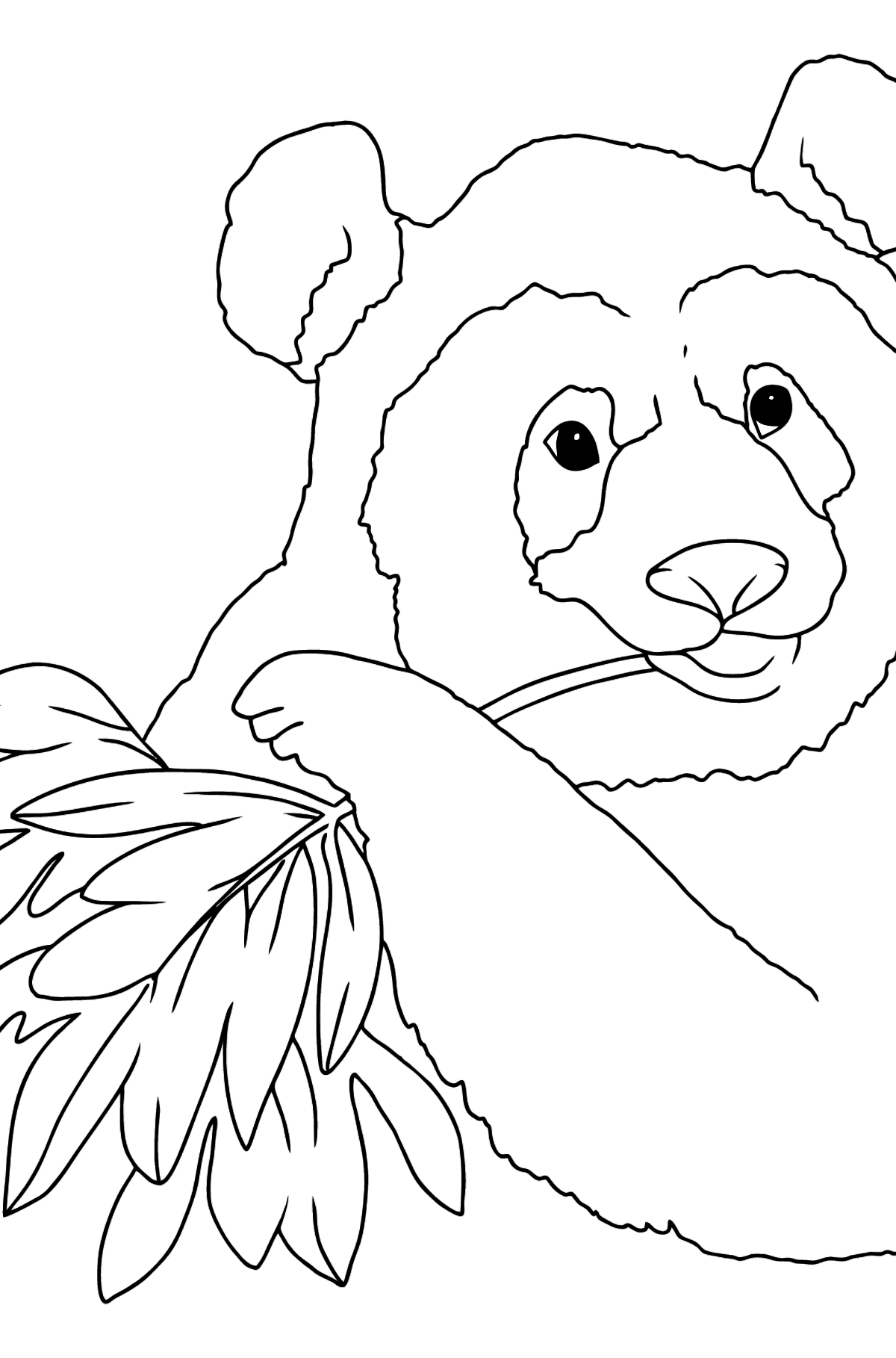 Coloring Page  - A Panda is Eating Leaves - Coloring Pages for Kids