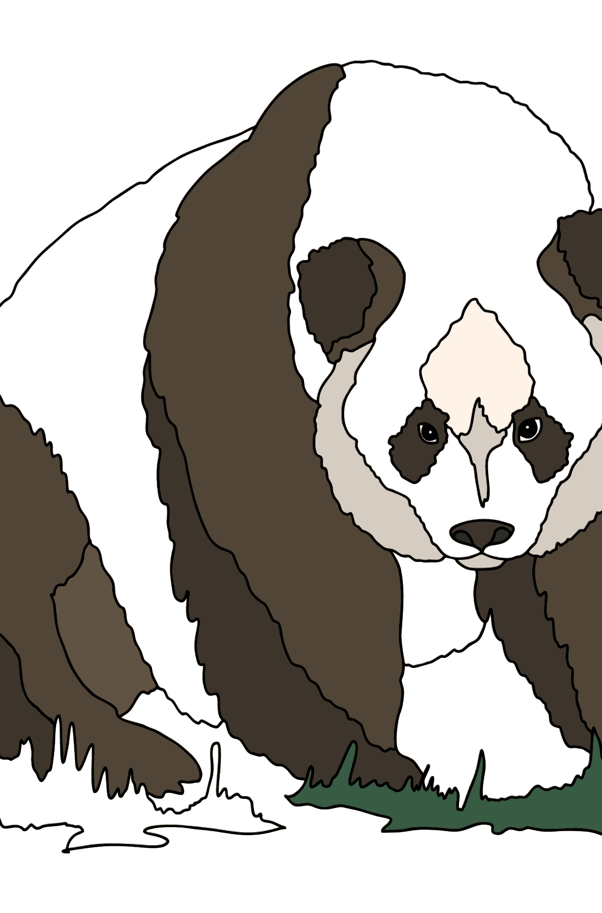 Coloring Page - A Panda is on a Hunt - Coloring Pages for Kids