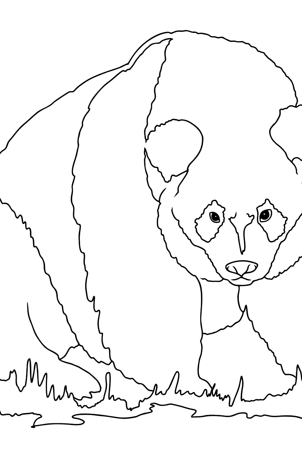Coloring Page - A Panda is Standing - Coloring Pages for Kids